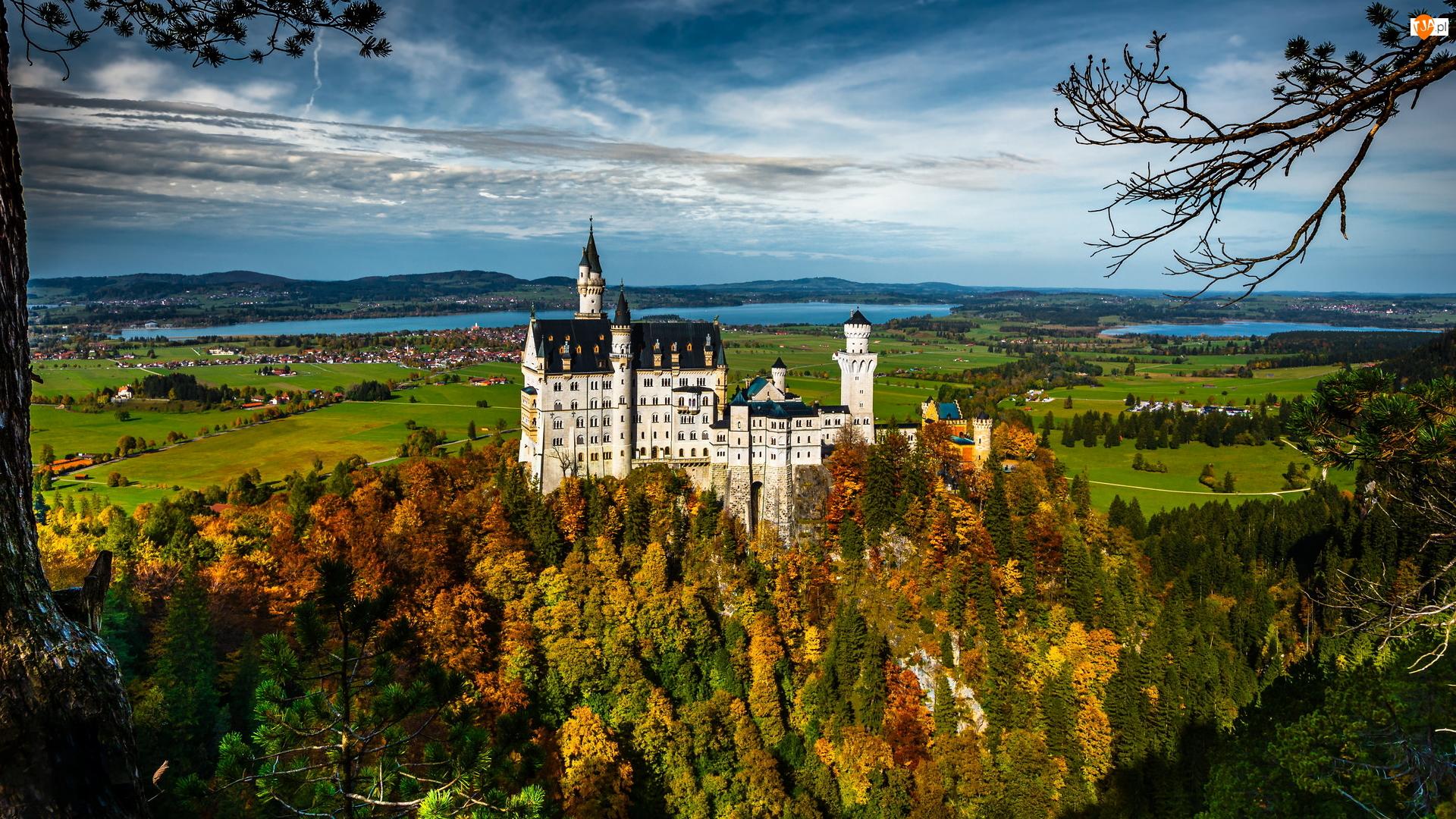 Pola, Jesień, Zamek Neuschwanstein, Bawaria, Wzgórze, Drzewa, Niemcy, Lasy