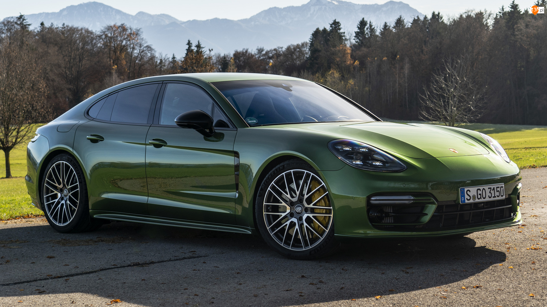 Bok, Zielone, Porsche Panamera S
