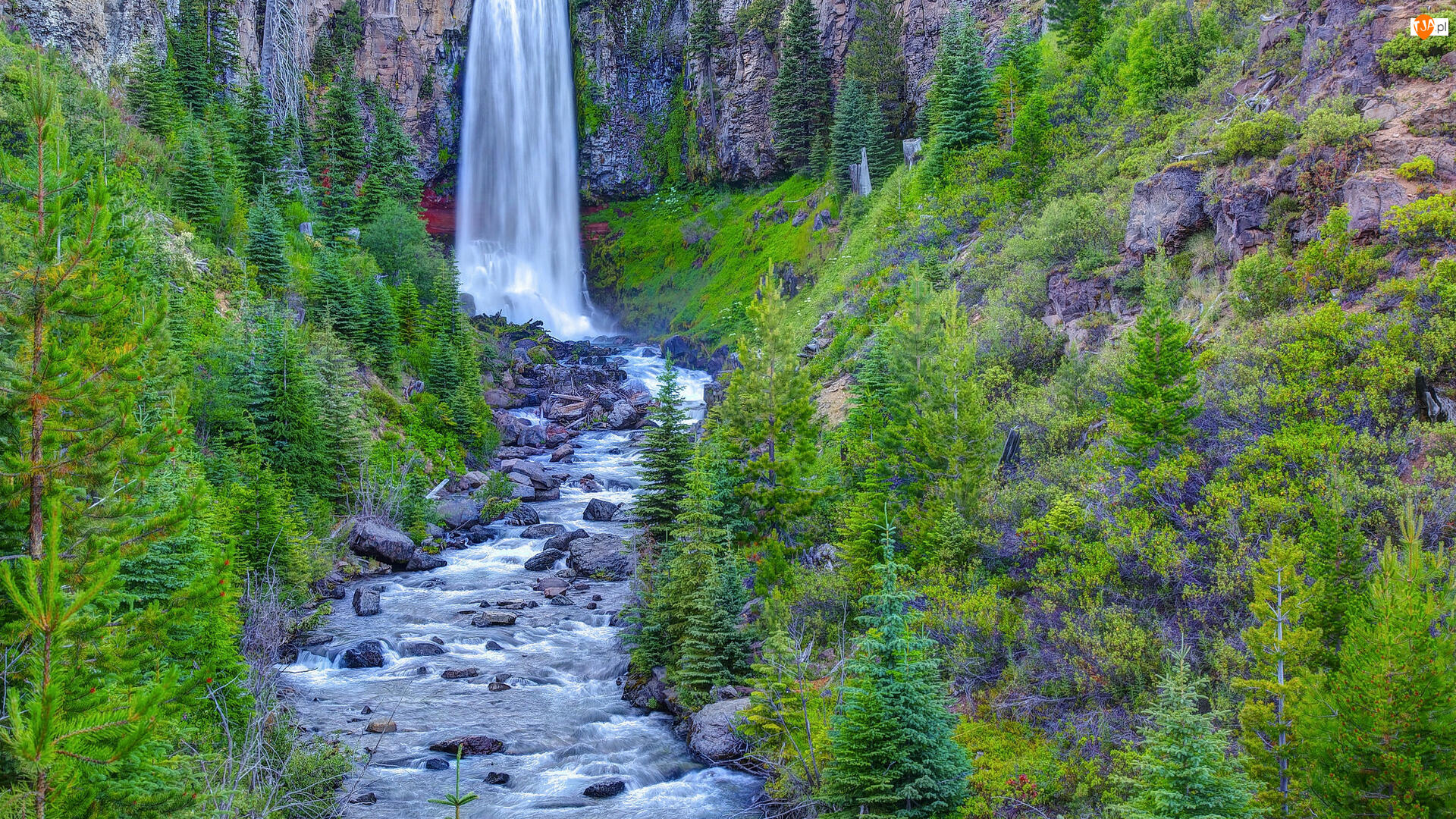 Stany Zjednoczone, Tumalo Falls, Stan Oregon, Drzewa, Las, Rzeka, Tumalo Creek, Wodospad, Skały