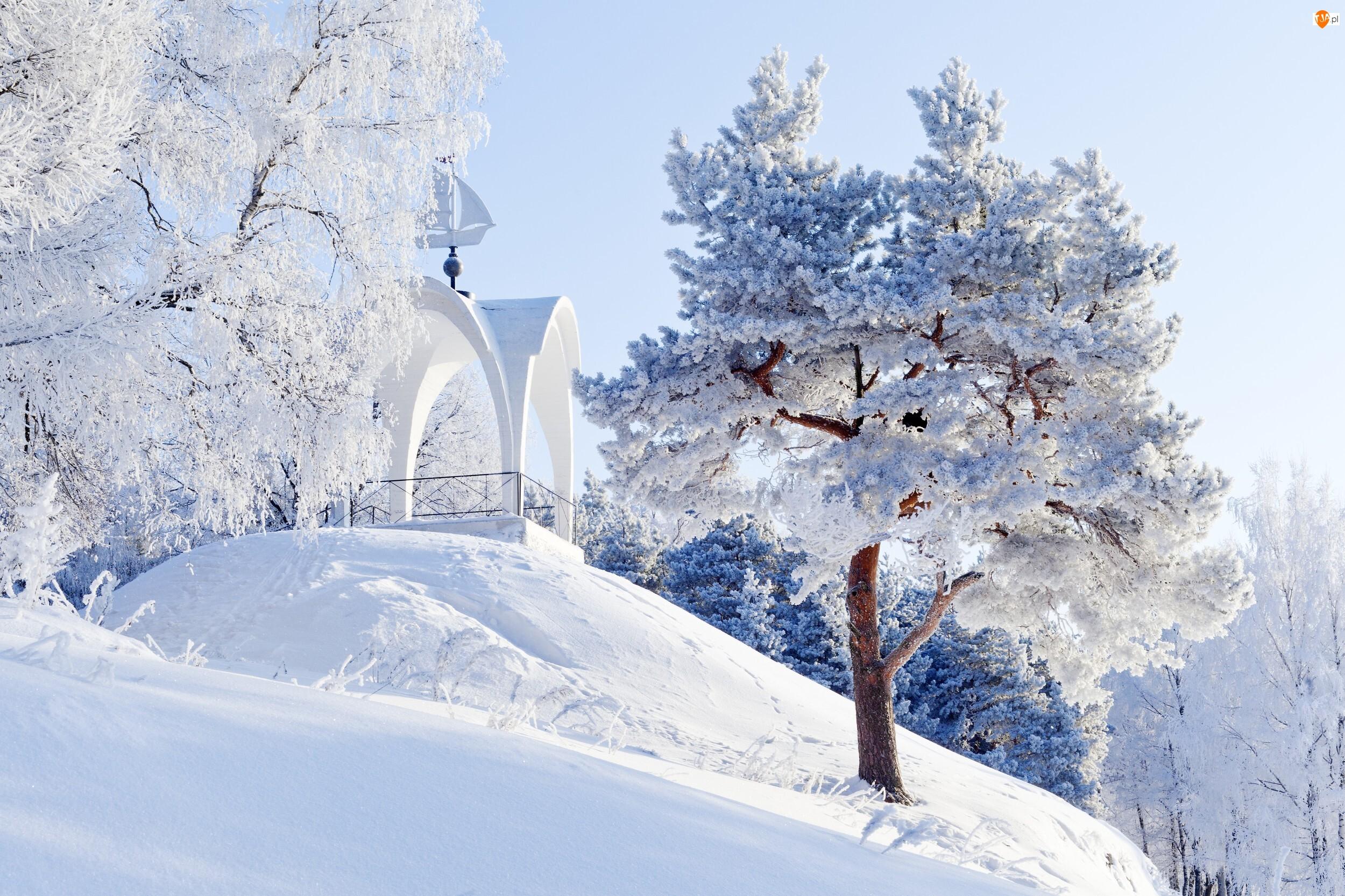 Wzgórze, Zima, Drzewa, Altana