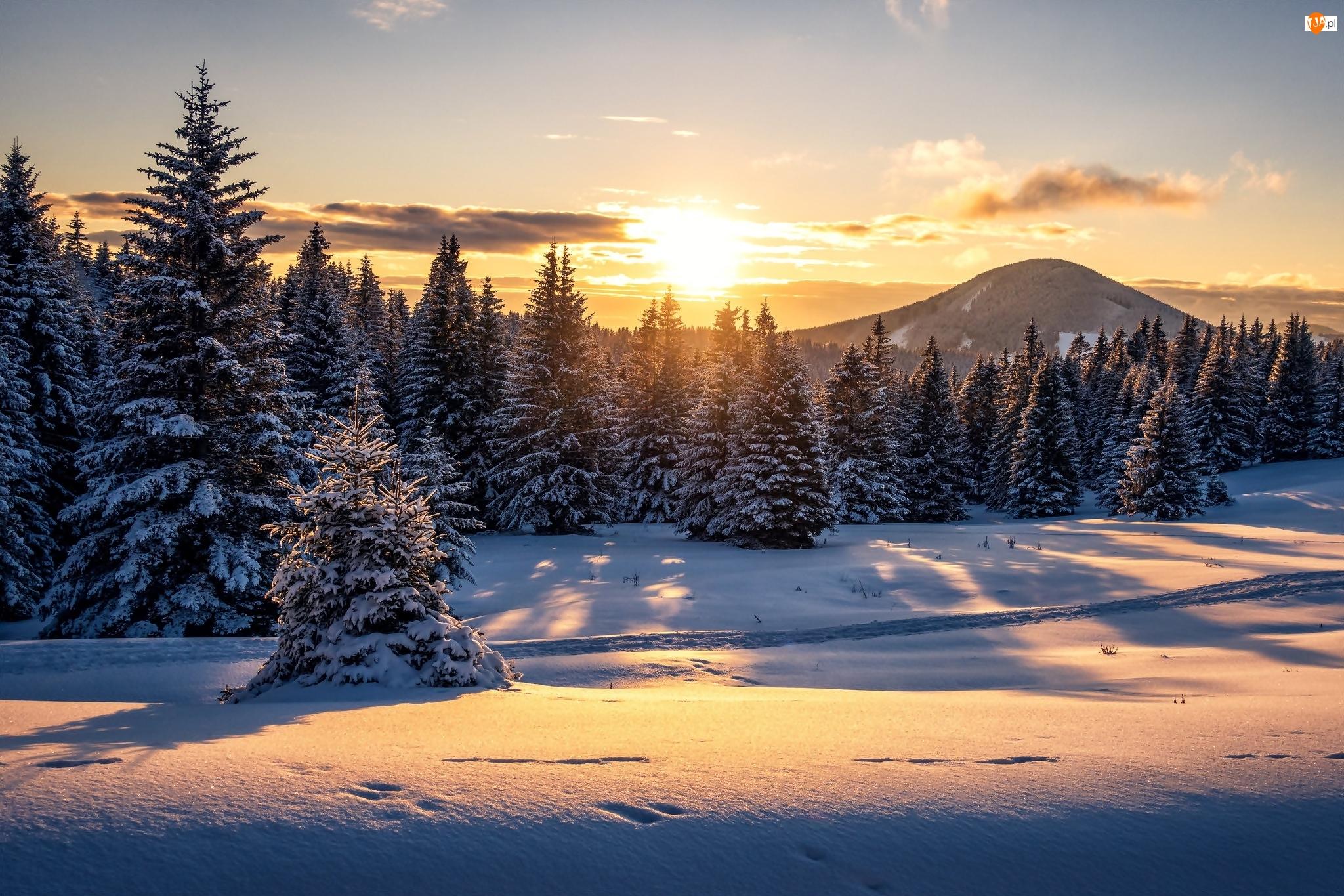 Ścieżka, Góry, Śnieg, Zachód słońca, Lasy, Wydeptana, Zima, Drzewa