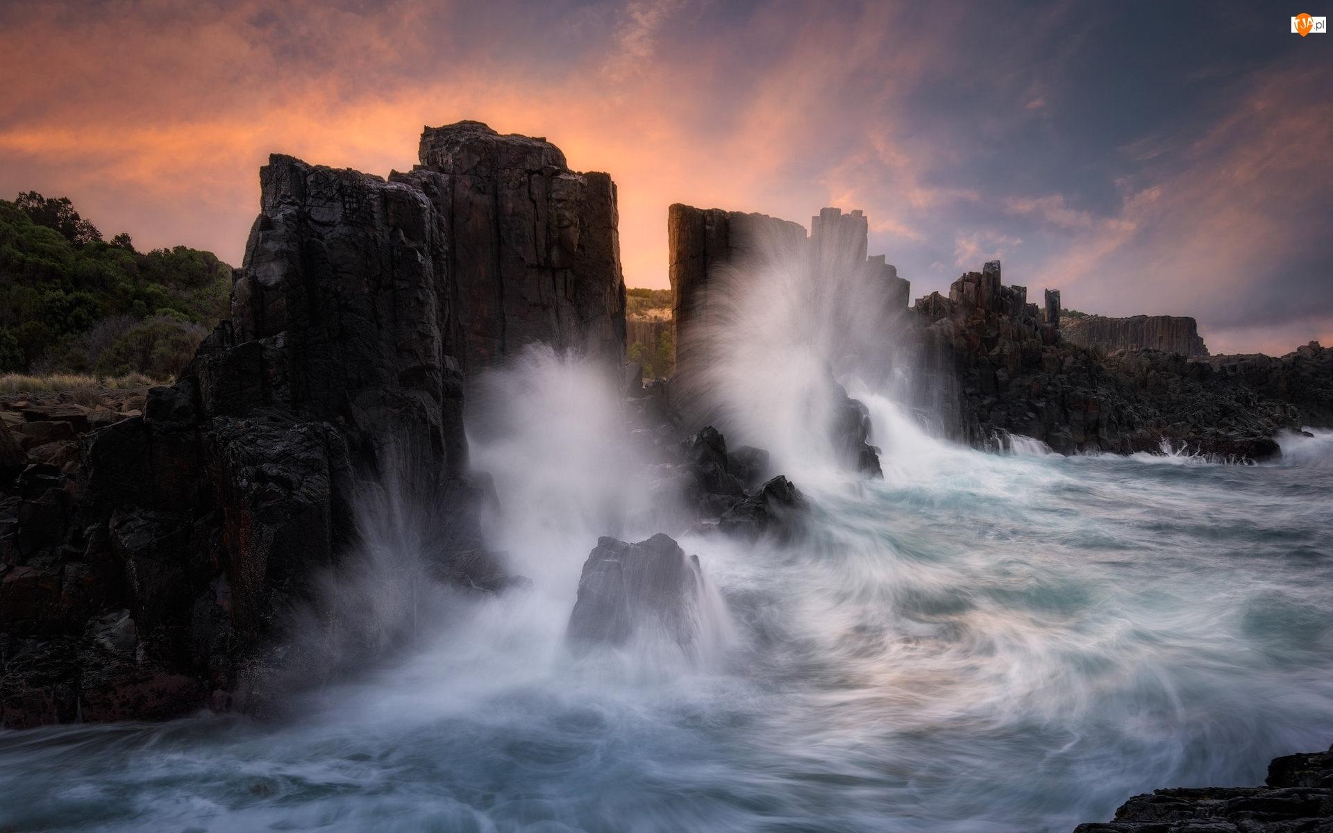 Australia, Fale, Kiama, Drzewa, Bombo, Formacja skalna, Bombo Headland Quarry, Morze, Skały