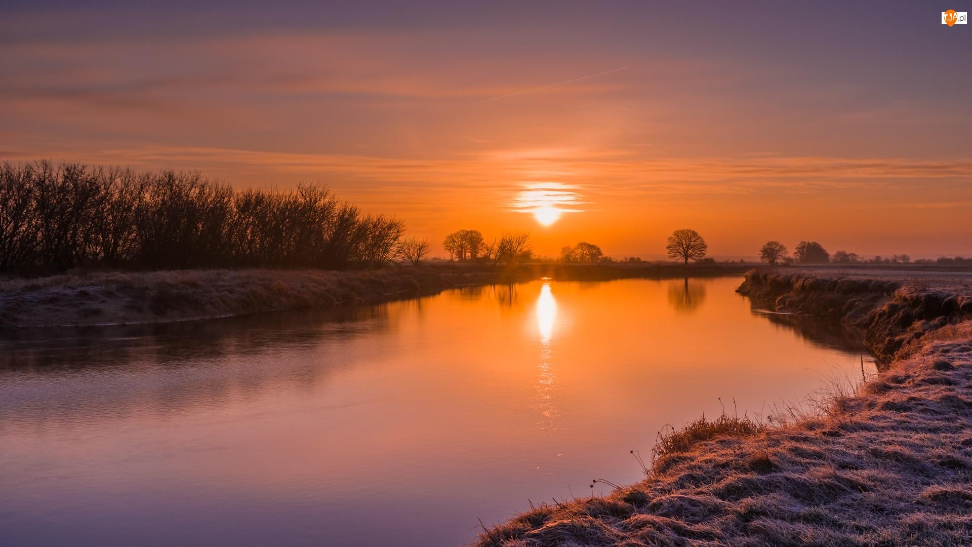 Zachód słońca, Niebo, Drzewa, Rzeka, Pomarańczowe