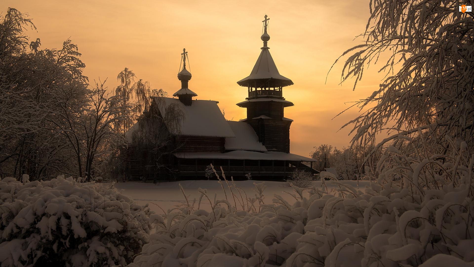 Cerkiew, Zima, Gałęzie, Krzewy, Ośnieżone, Drzewa