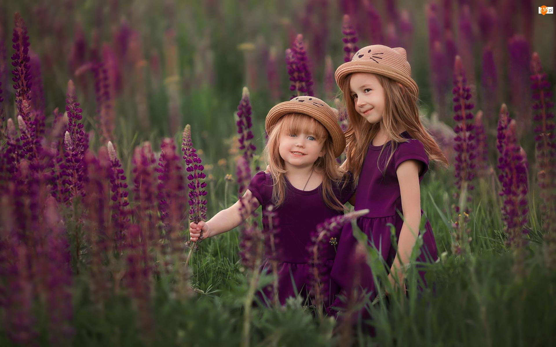 Dziewczynki, Dwie, Łąka, Łubin, Kapelusze, Kwiaty
