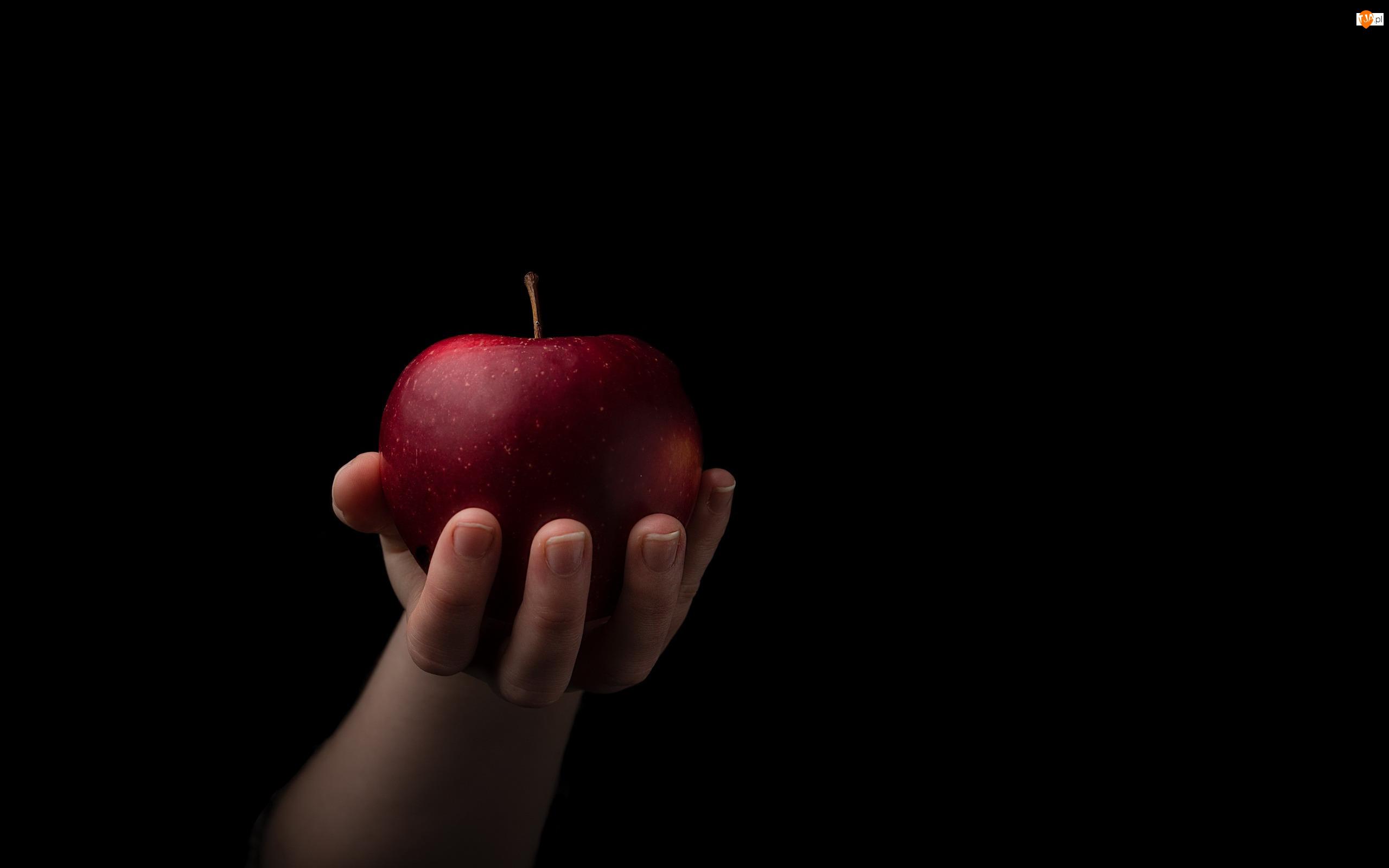 Jabłko, Tło, Czerwone, Dłoń, Czarne