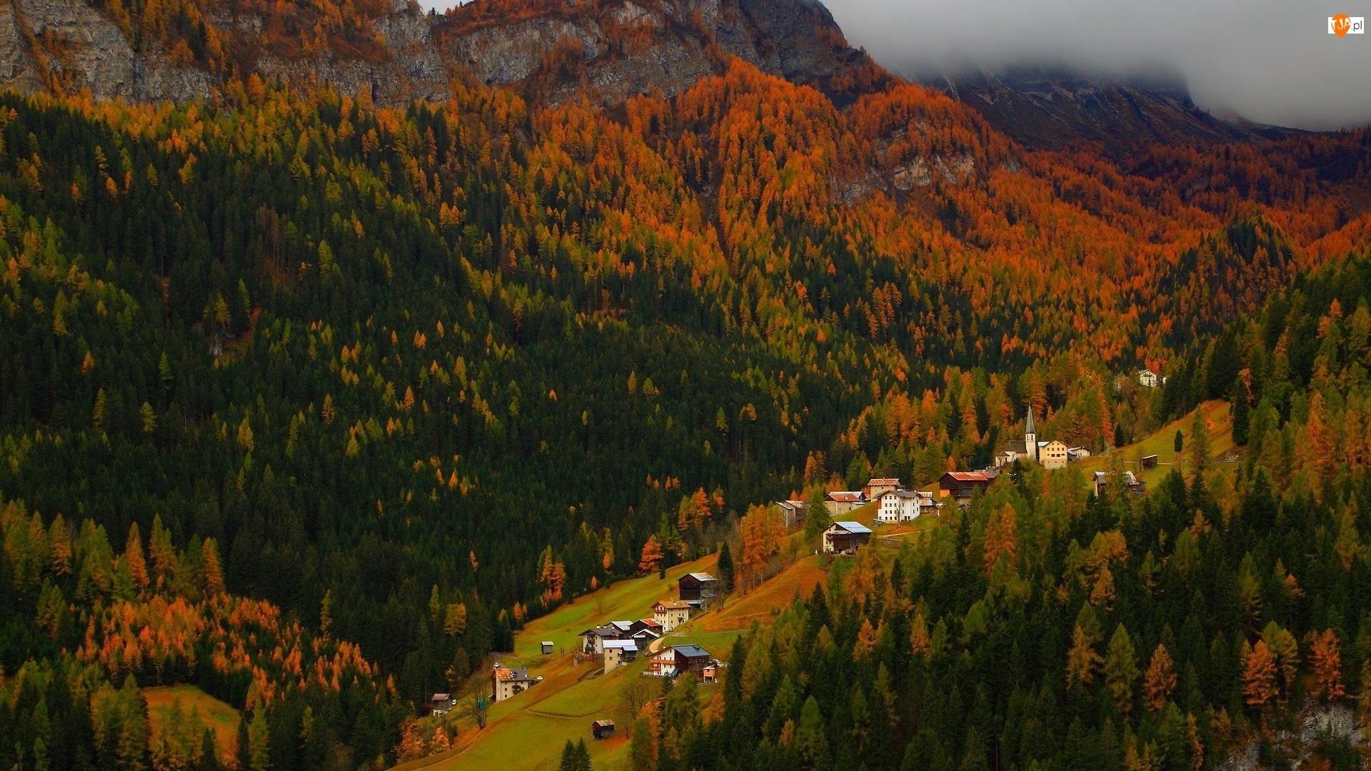 Las, Domy, Góry, Jesień, Dolina