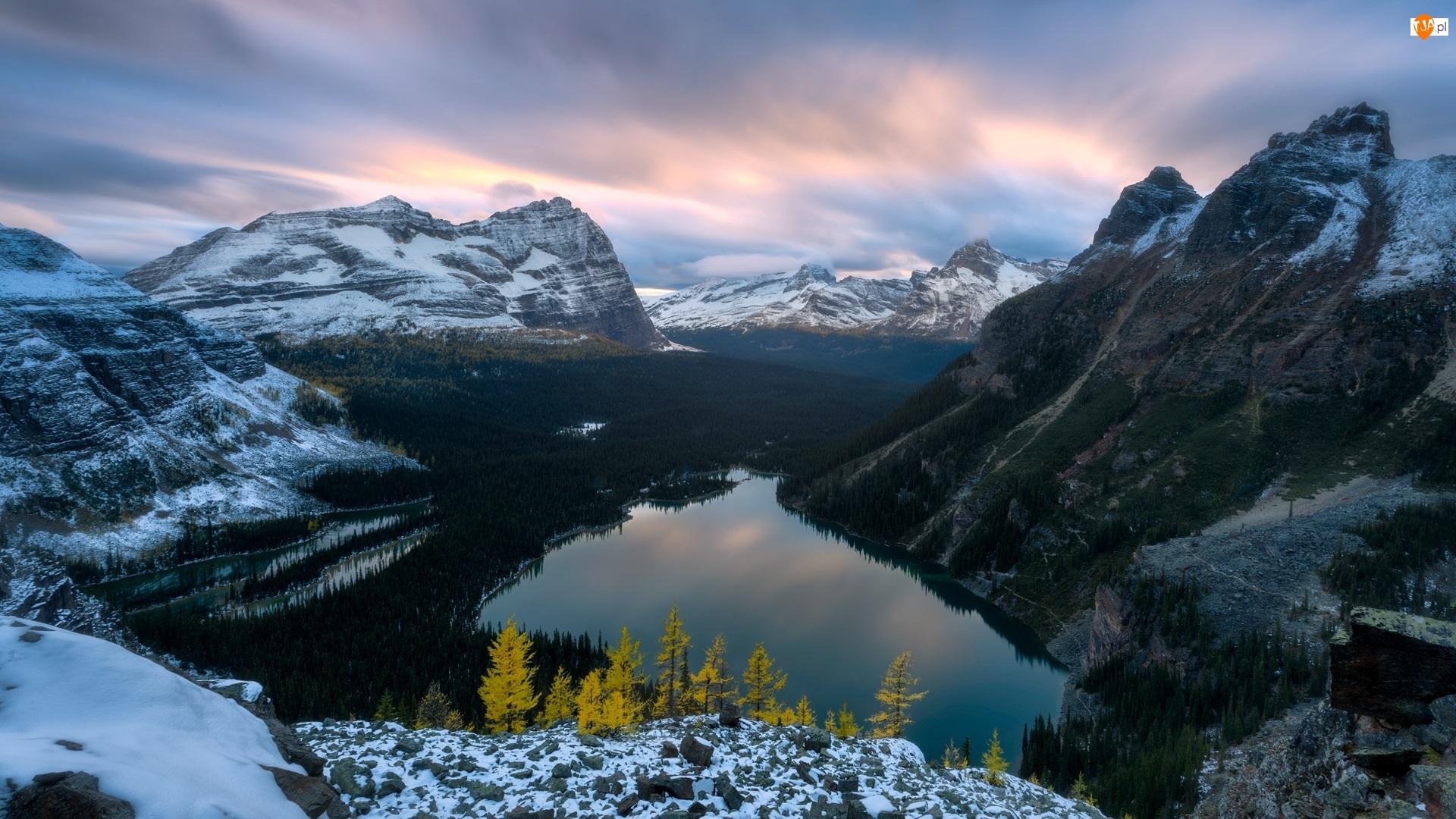 Jezioro, Góry, Drzewa, Canadian Rockies, Kolumbia Brytyjska, Zima, Lake OHara, Kanada, Las, Park Narodowy Yoho, Chmury
