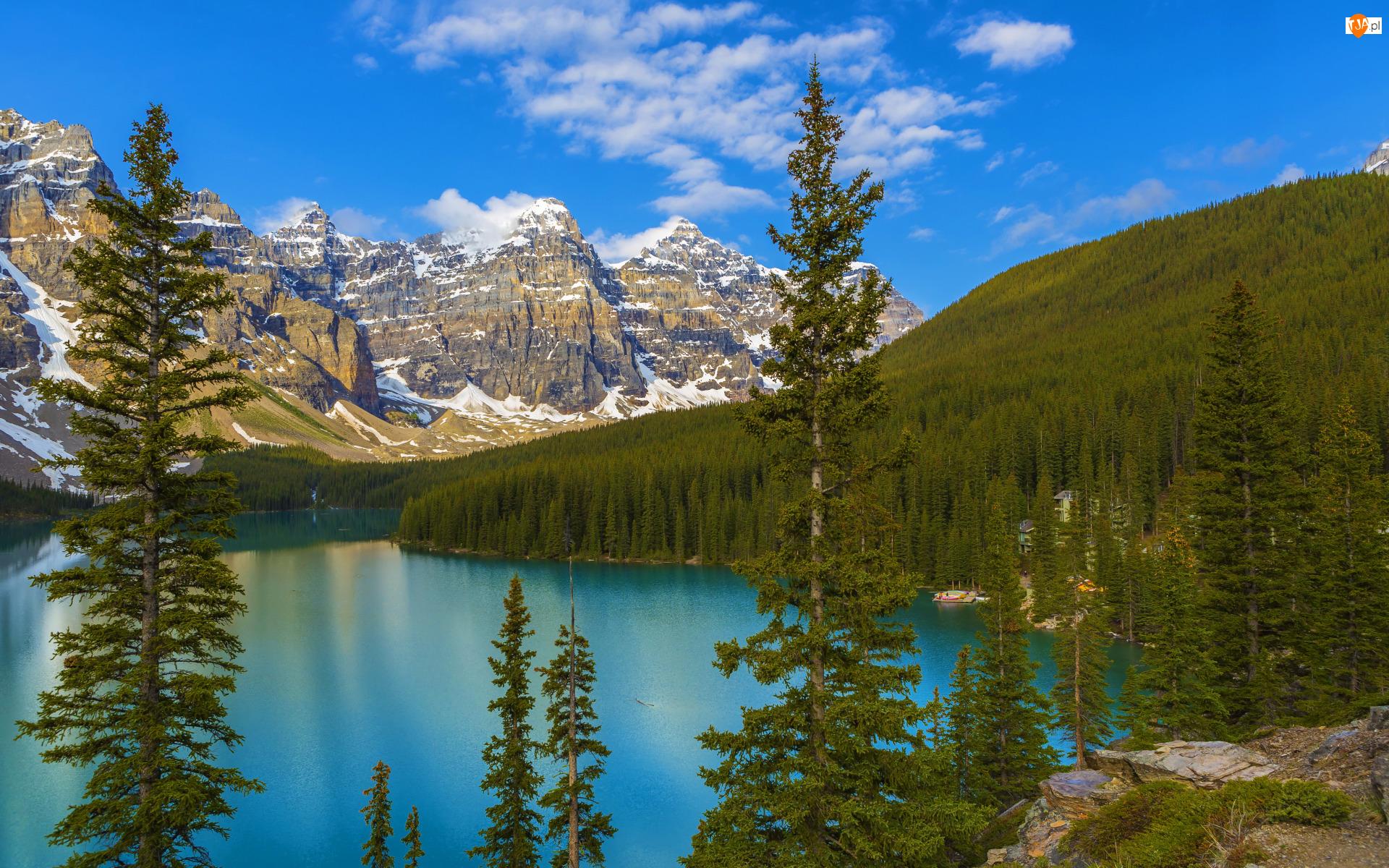 Kanada, Jezioro, Prowincja Alberta, Świerki, Park Narodowy Banff, Moraine Lake, Las, Góry, Drzewa