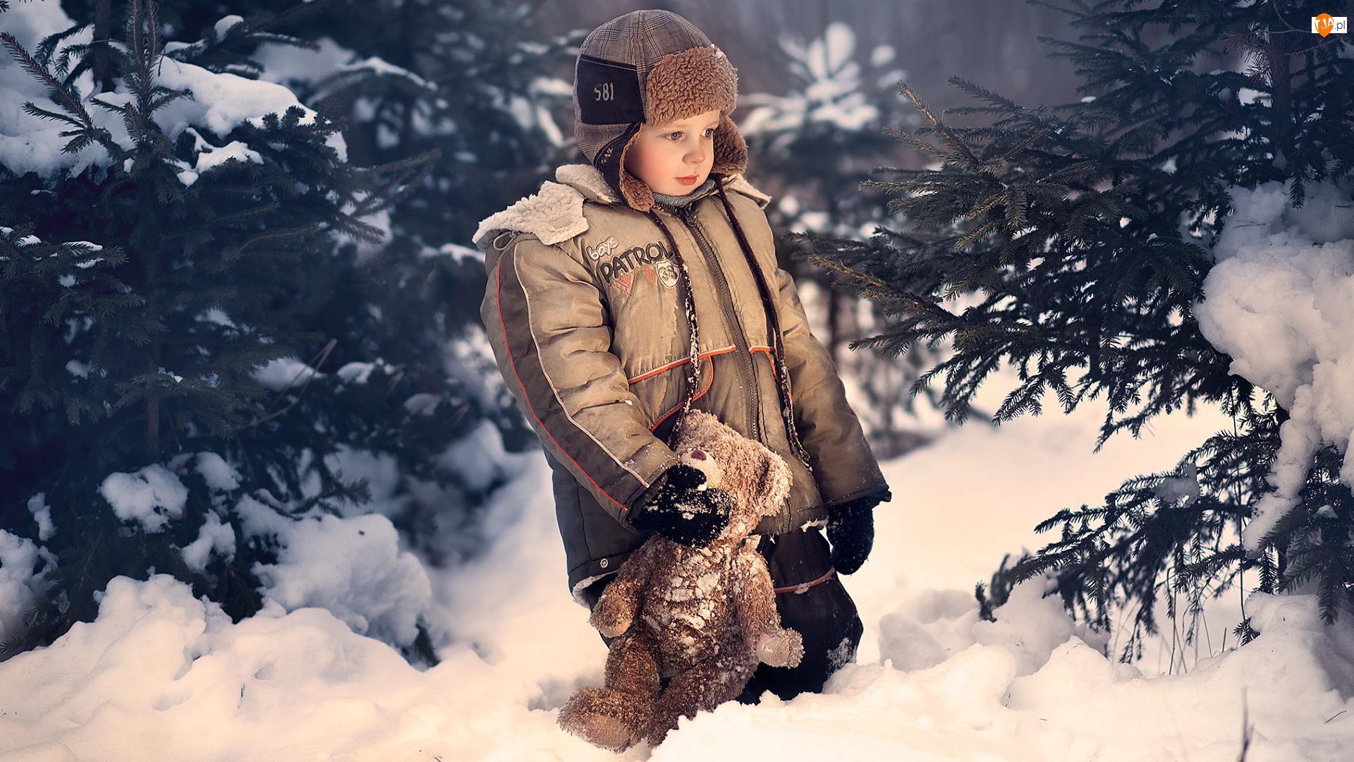 Las, Zima, Chłopiec, Miś, Śnieg, Pluszowy
