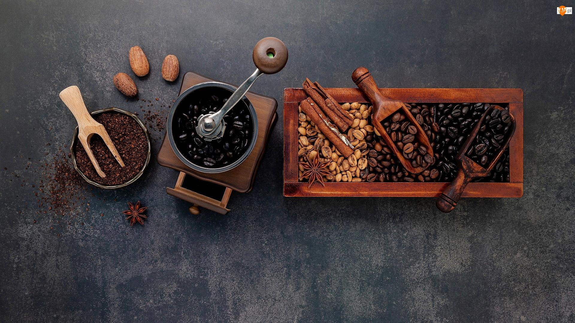 Kawa, Młynek, Kompozycja, Ziarenka, Anyż, Cynamon, Łopatki