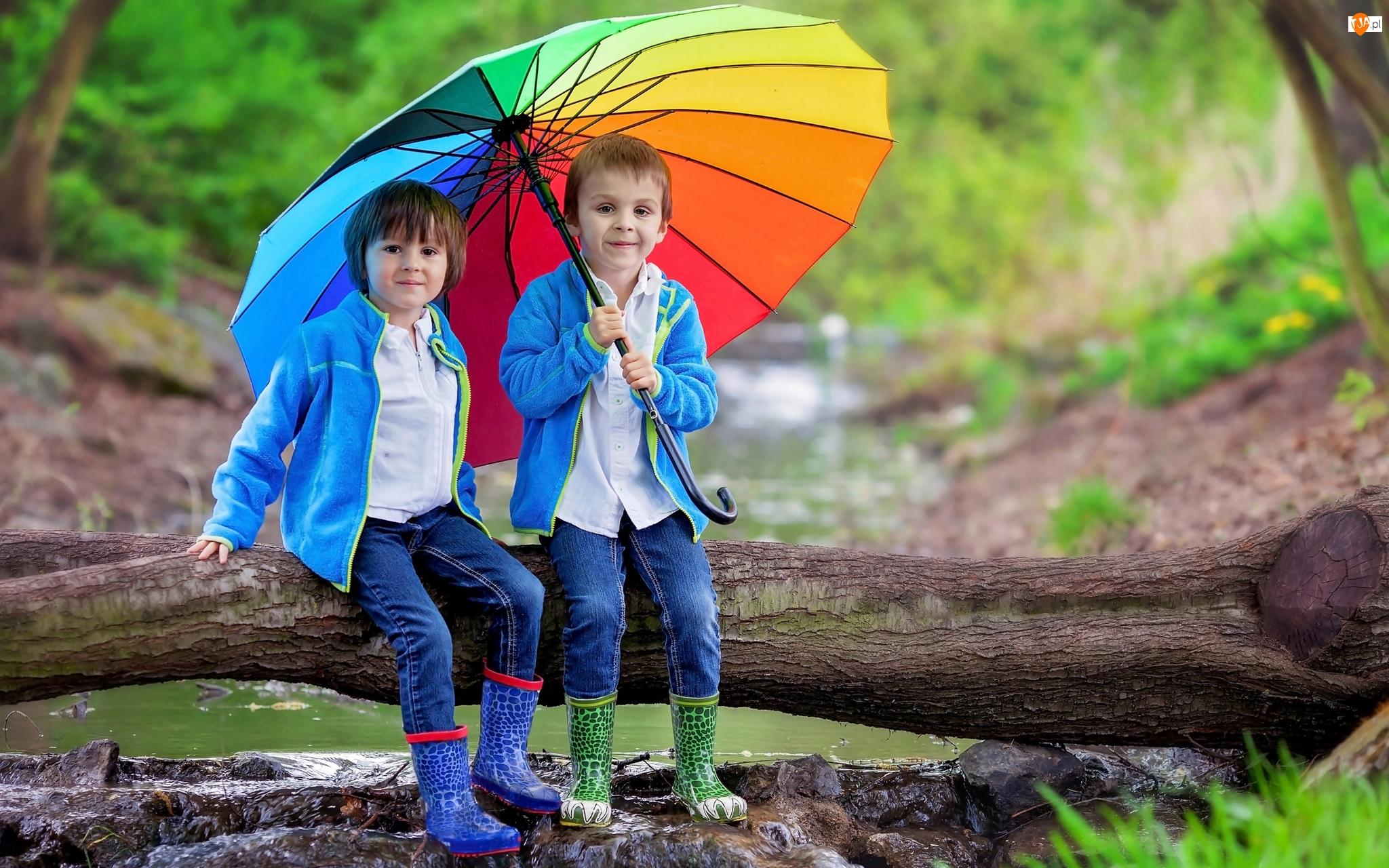 Drzewo, Dzieci, Chłopcy, Parasolka