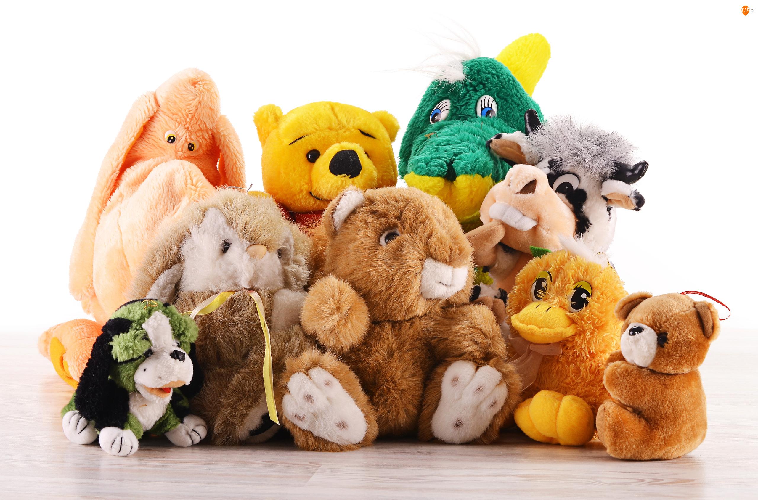 Maskotki, Tło, Zabawki, Pluszowe, Białe