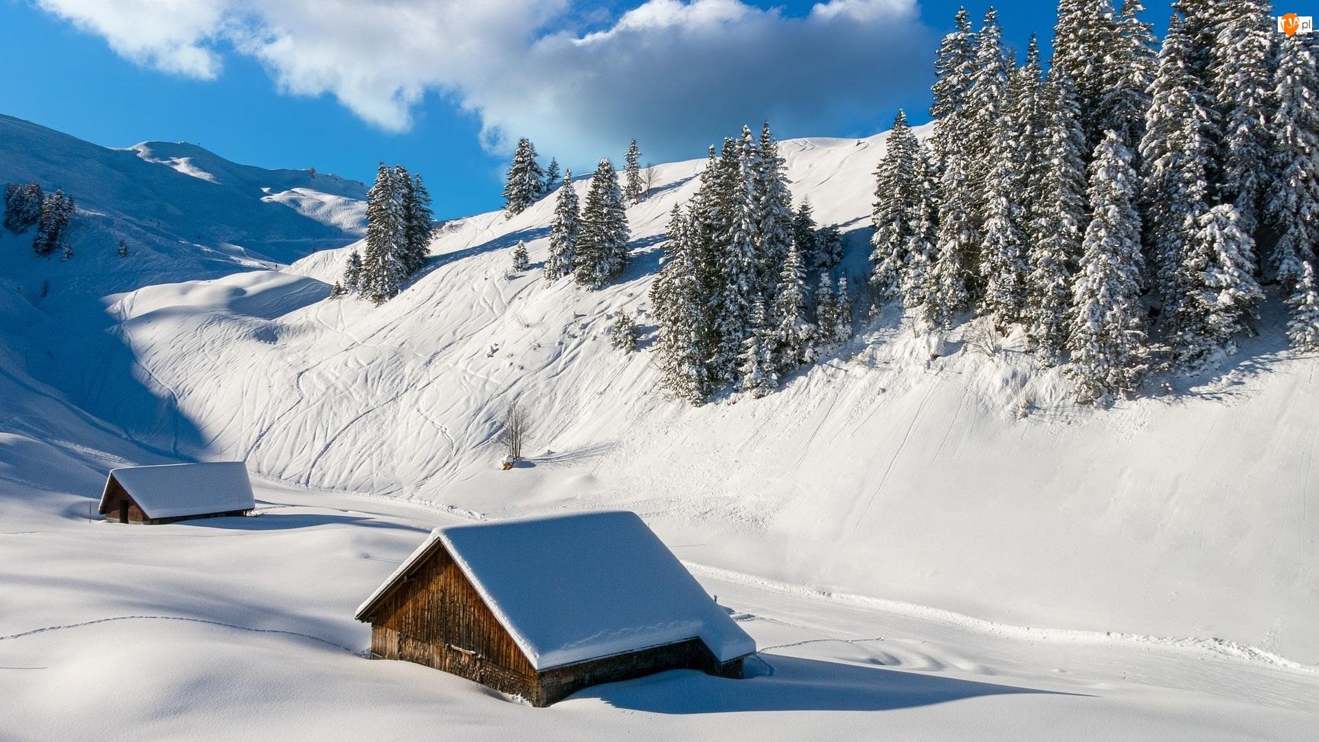 Góry, Śnieg, Domki, Zima, Szopy, Drewniane, Drzewa