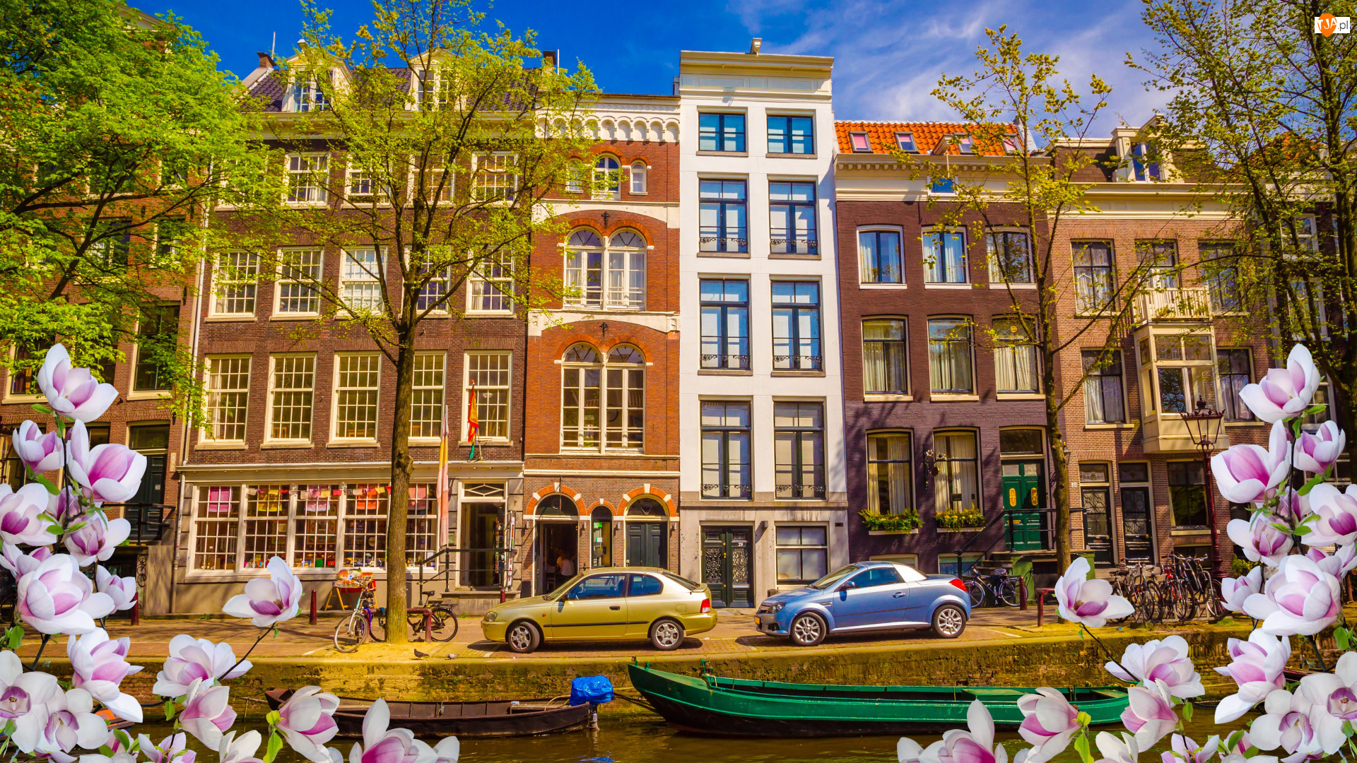 Amsterdam, Holandia, Ulica, Kwiaty, Kanał, Domy