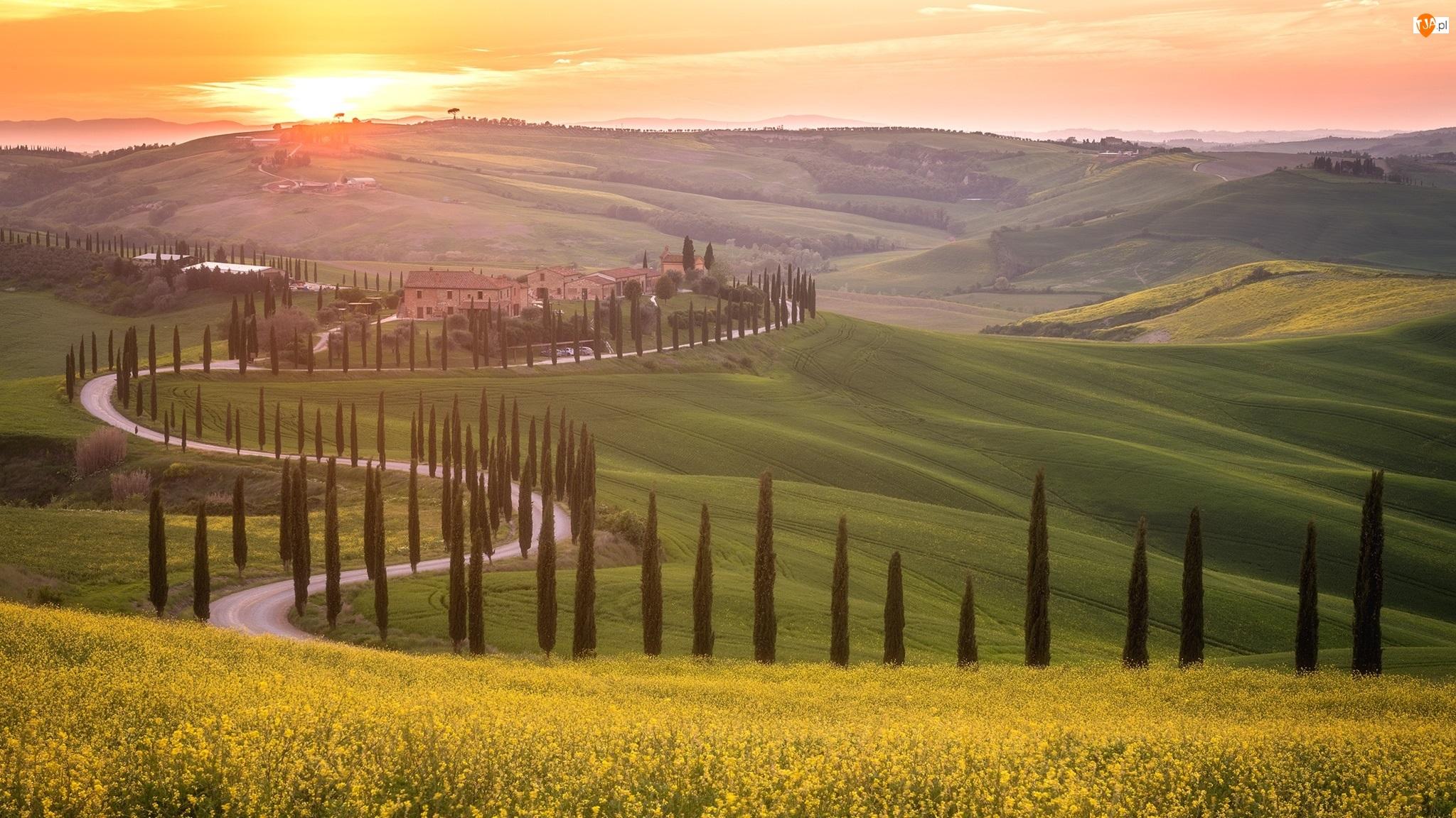 Wschód słońca, Drzewa, Cyprysy, Droga, Włochy, Toskania, Agriturismo Baccoleno, Hotel, Domy, Wzgórza