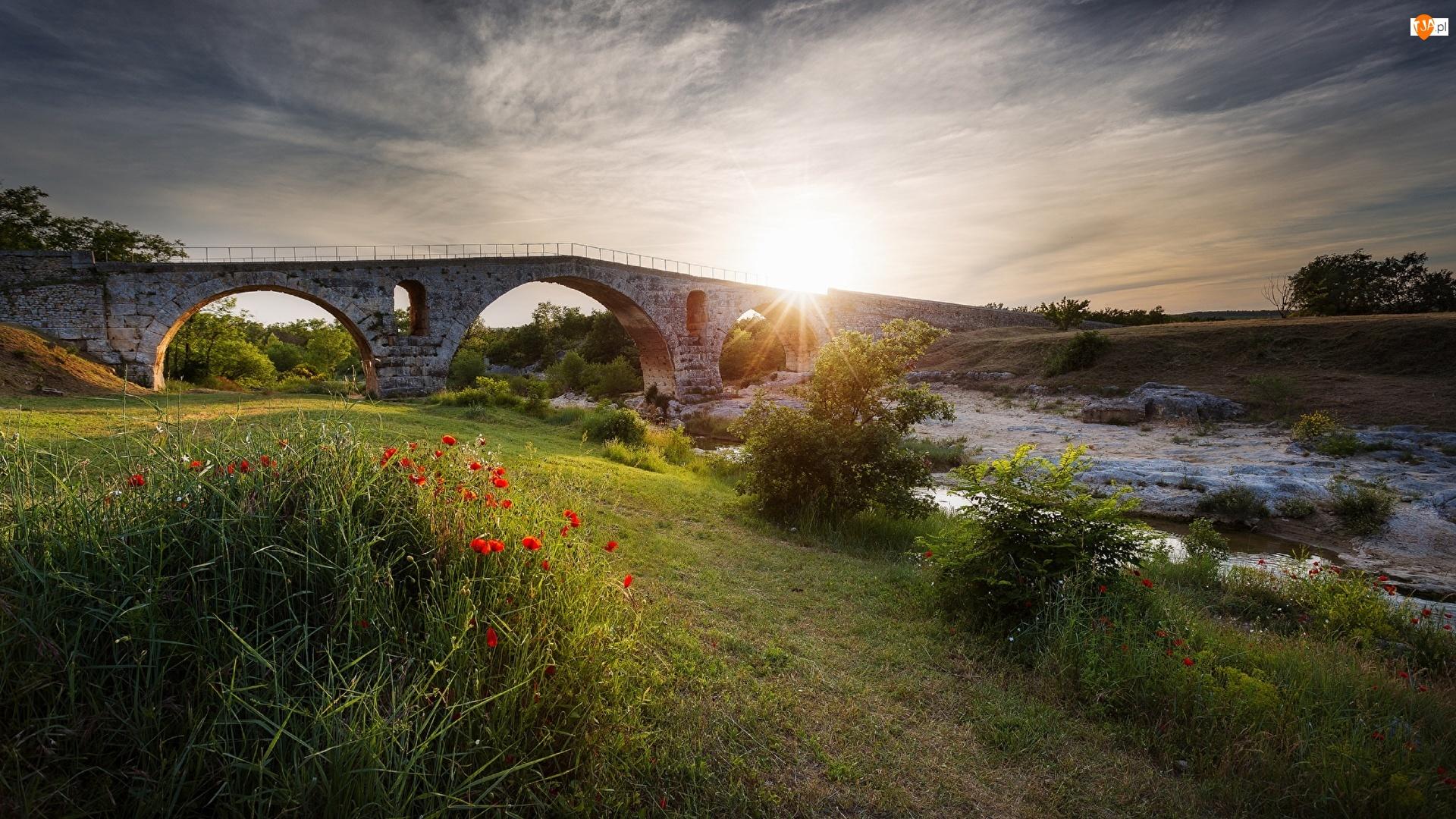 Rzeka, Kamienny, Krzewy, Wschód słońca, Maki, Trawa, Most