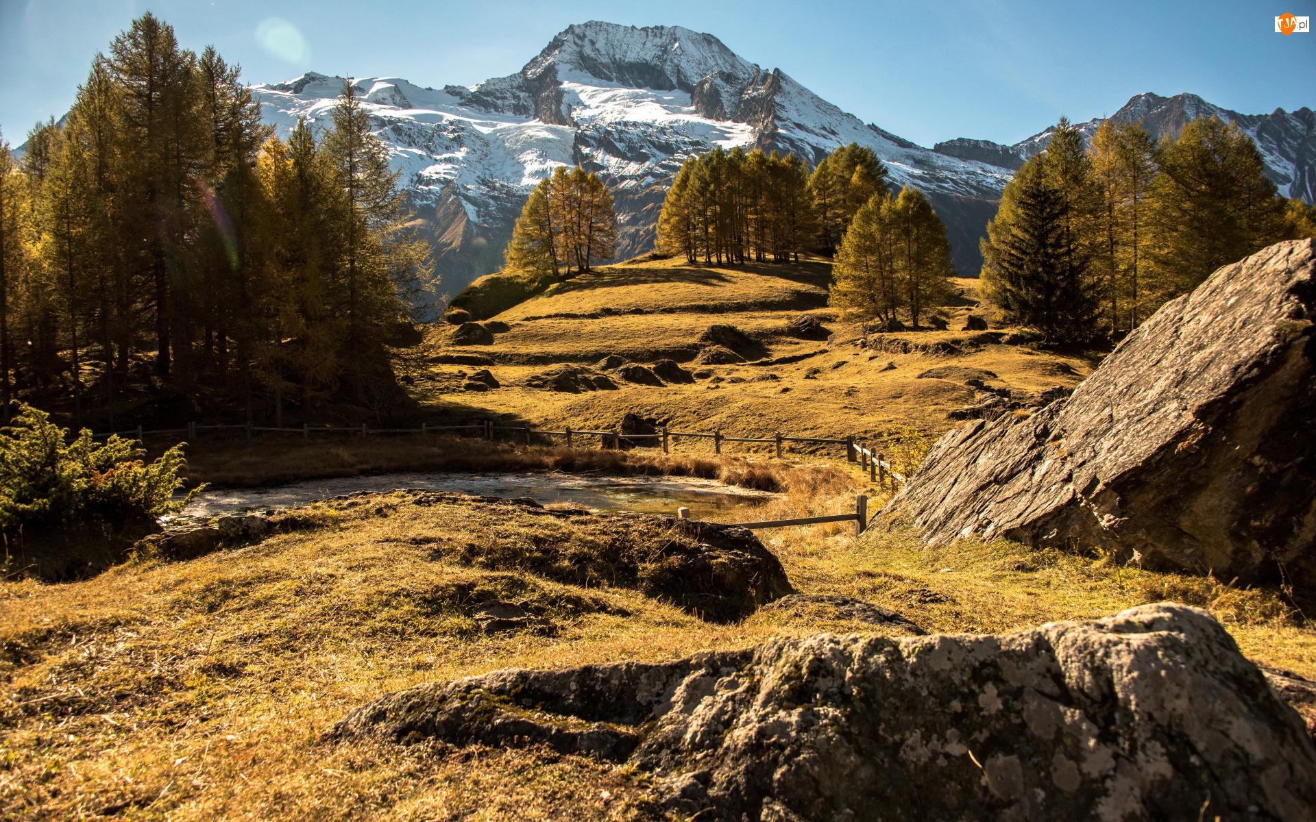Drzewa, Skały, Góry, Jesień, Płot