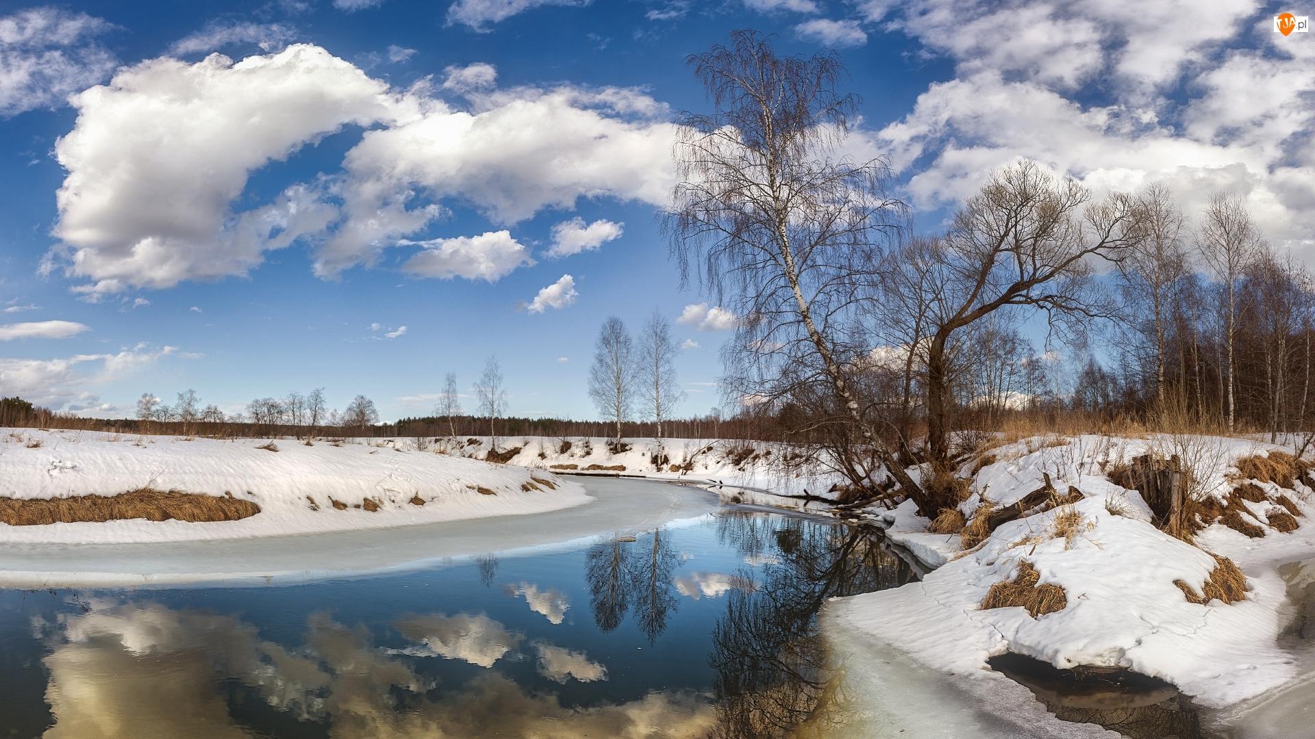 Rzeka, Zima, Drzewa, Chmury, Śnieg, Brzozy