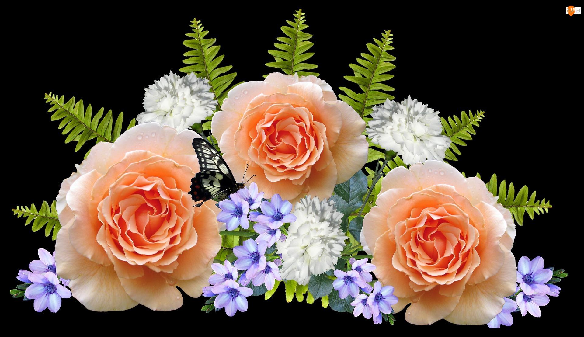 Liście, 2D, Róże, Kwiaty, Motyl