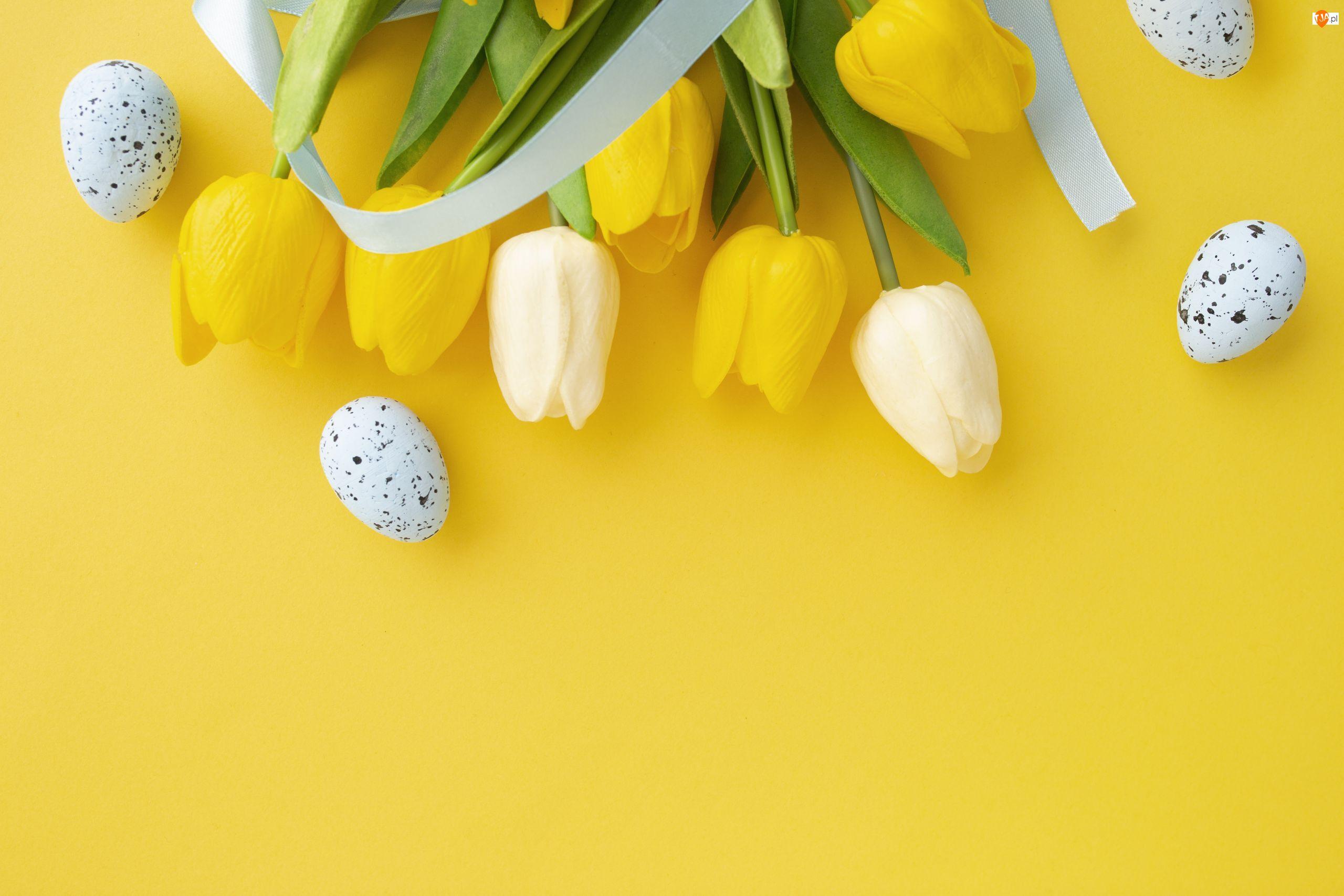 Wiosna, Kwiaty, Tło, Wielkanoc, Żółte, Jajeczka, Tulipany