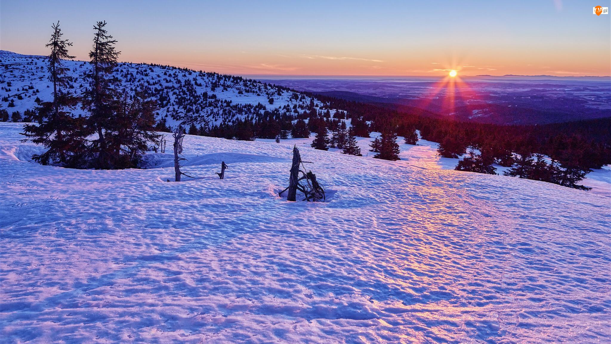Drzewa, Zima, Góry, Wschód słońca