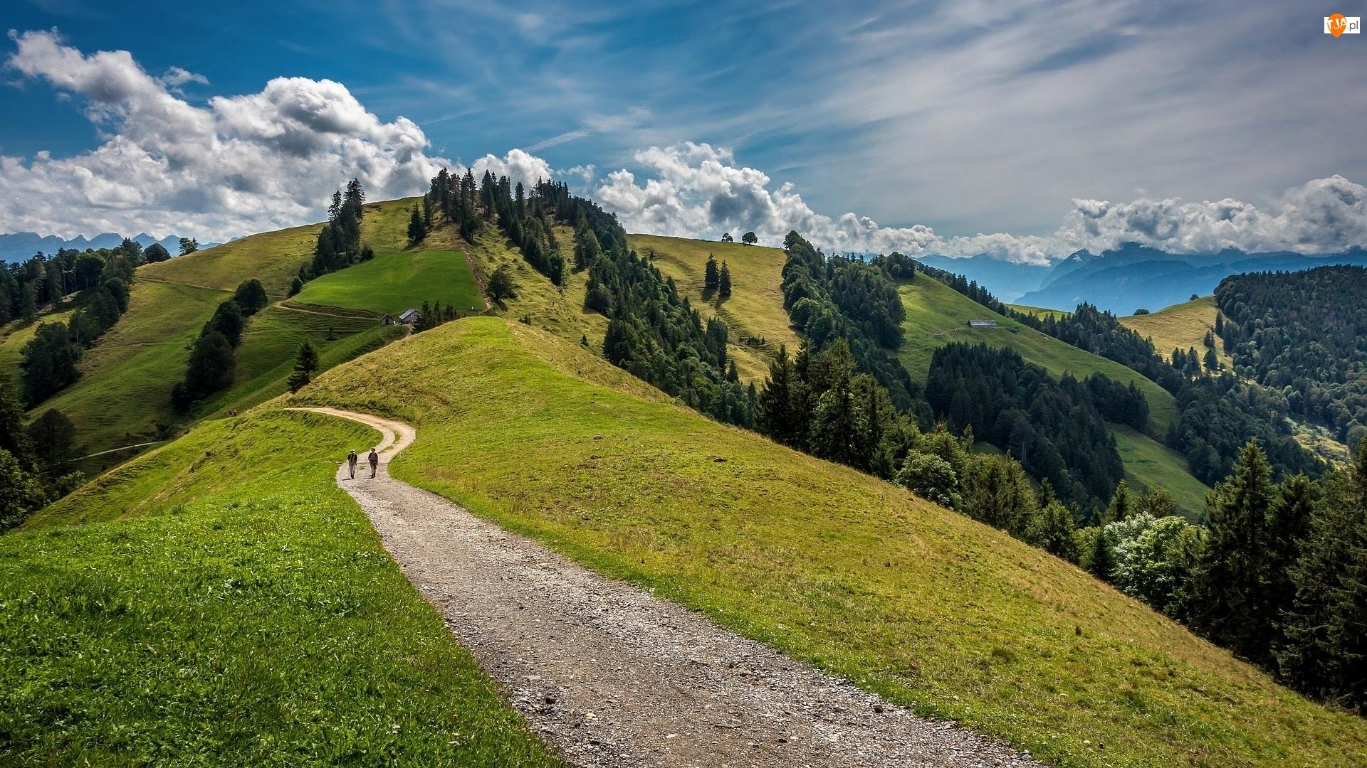 Zielone, Góry, Droga, Chmury, Wzgórze, Drzewa