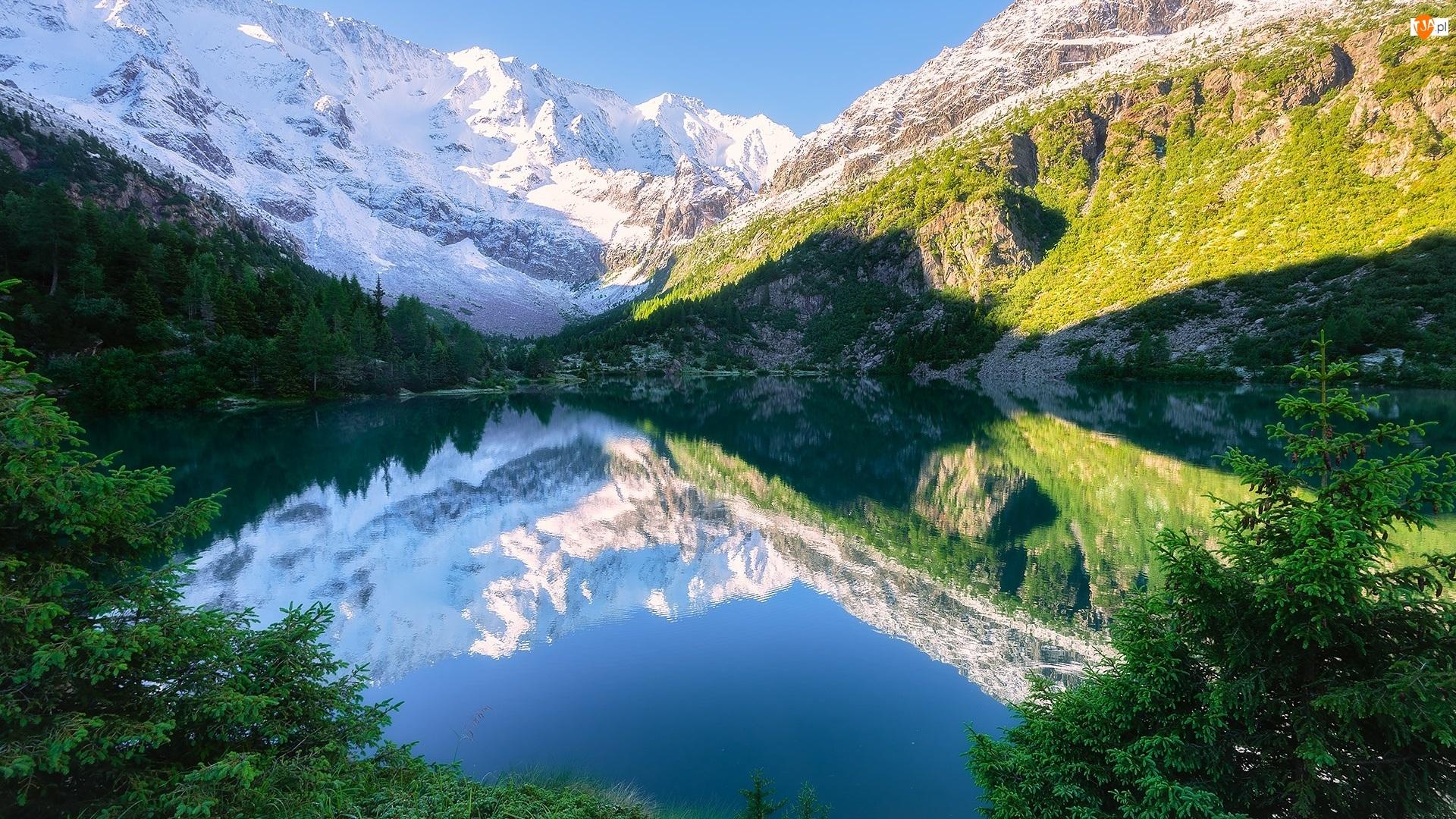 Ośnieżone, Góry, Jezioro, Odbicie, Szczyty, Drzewa