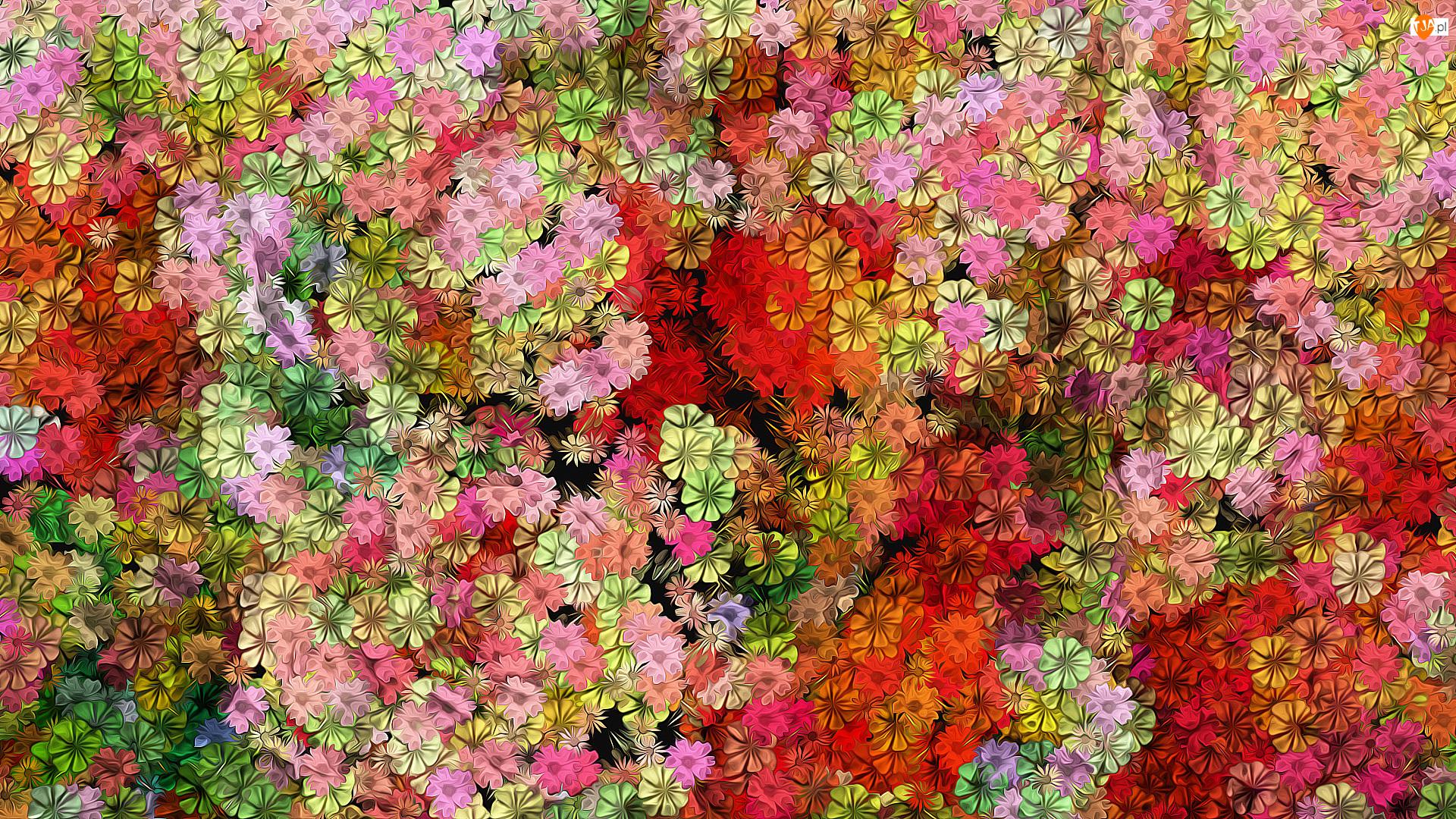 Kolorowe, Tekstura, Kwiaty