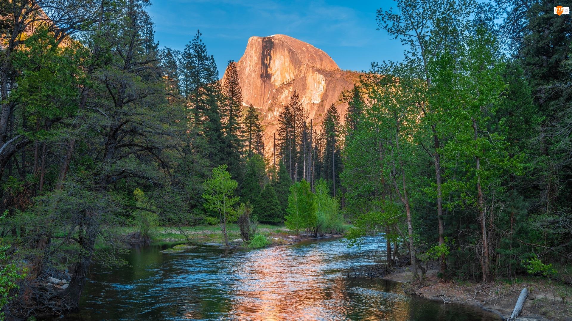 Rzeka, Stany Zjednocznone, Góry, Merced River, Kalifornia, Szczyt Half Dome, Drzewa, Park Narodowy Yosemite