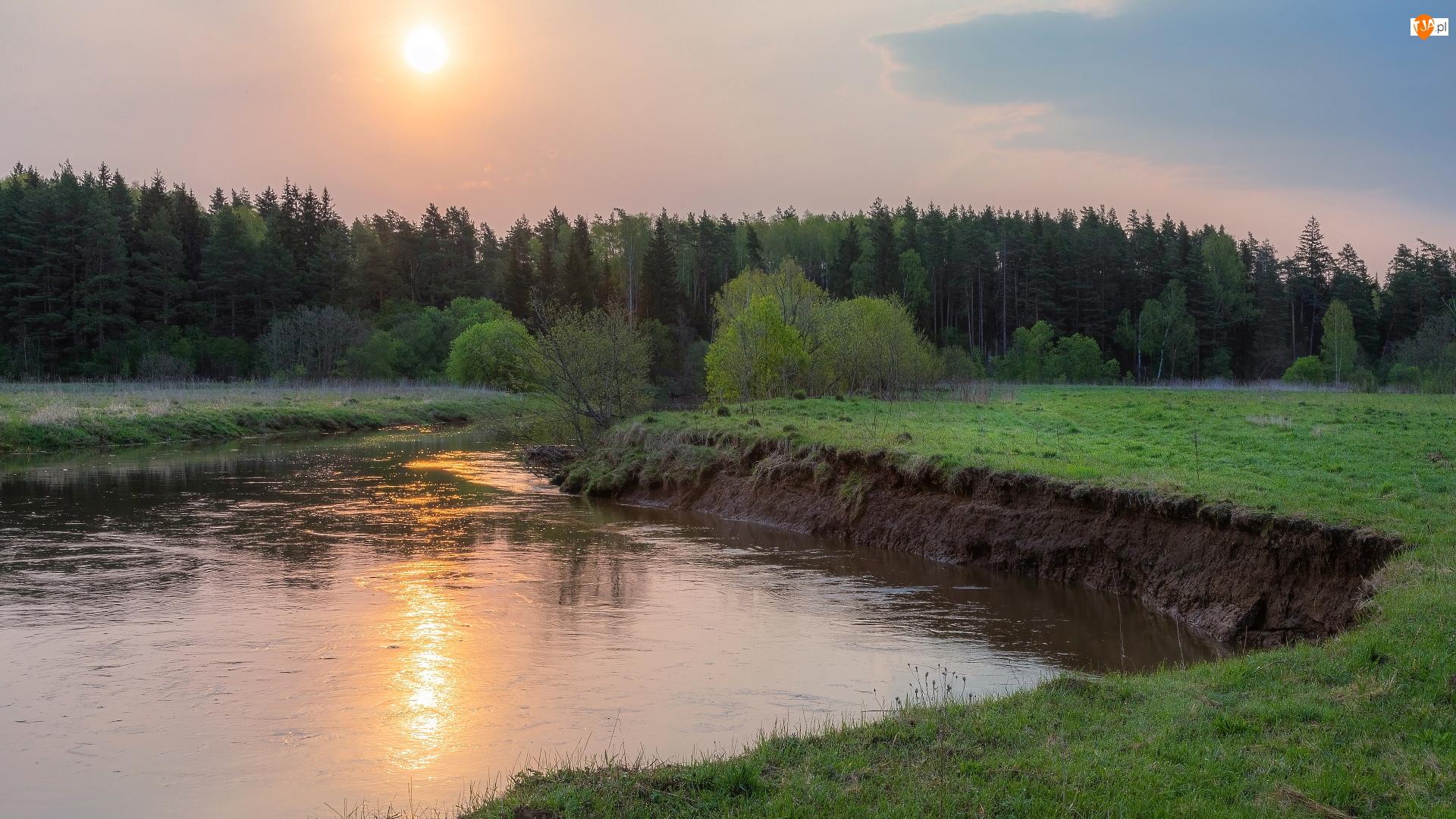 Zachód słońca, Rzeka, Las, Drzewa