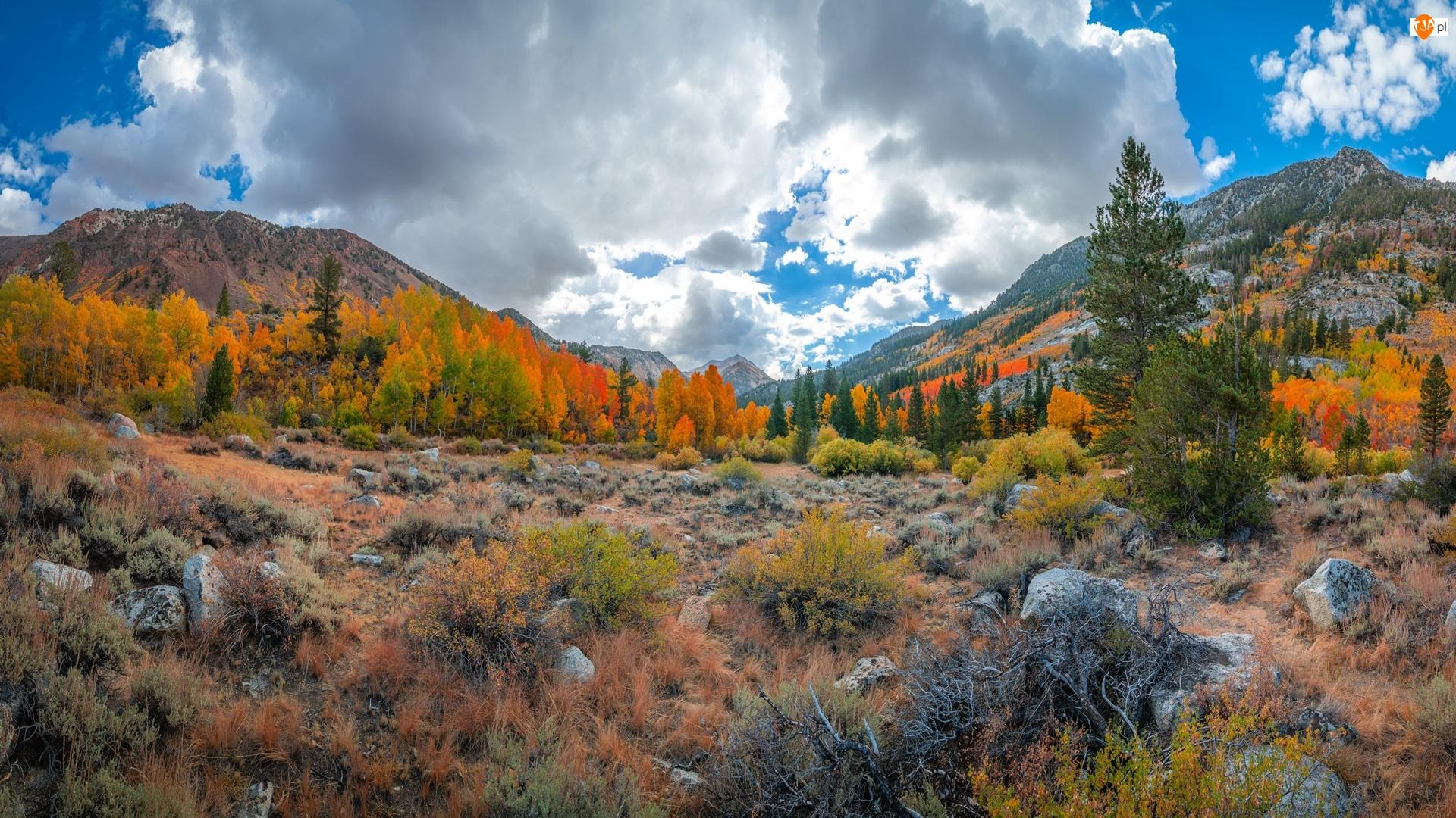 Drzewa, Góry, Kamienie, Jesień, Krzewy, Chmury