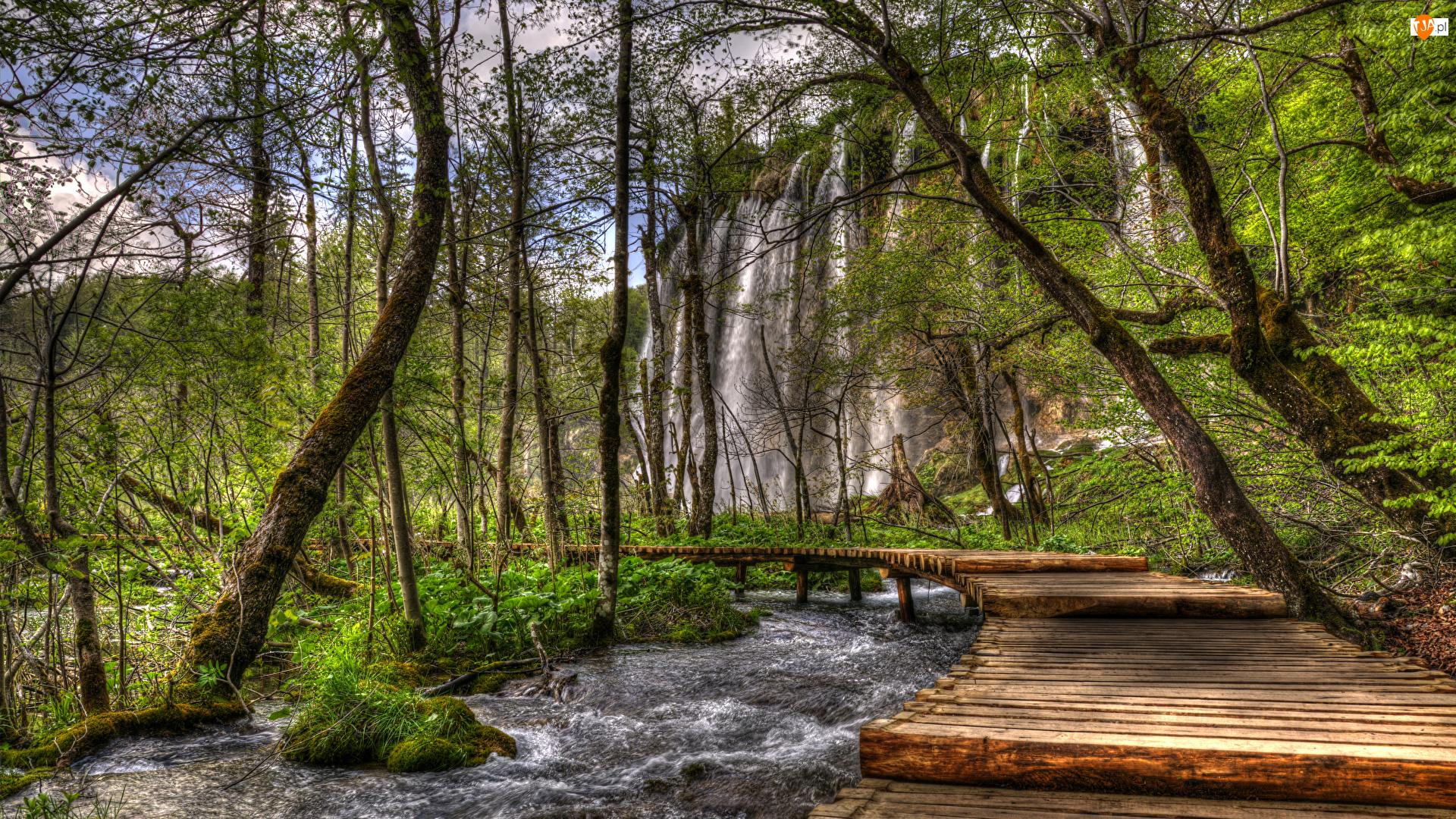 Park Narodowy Jezior Plitwickich, Chorwacja, Rzeka, Drzewa, Wodospad, Pomost