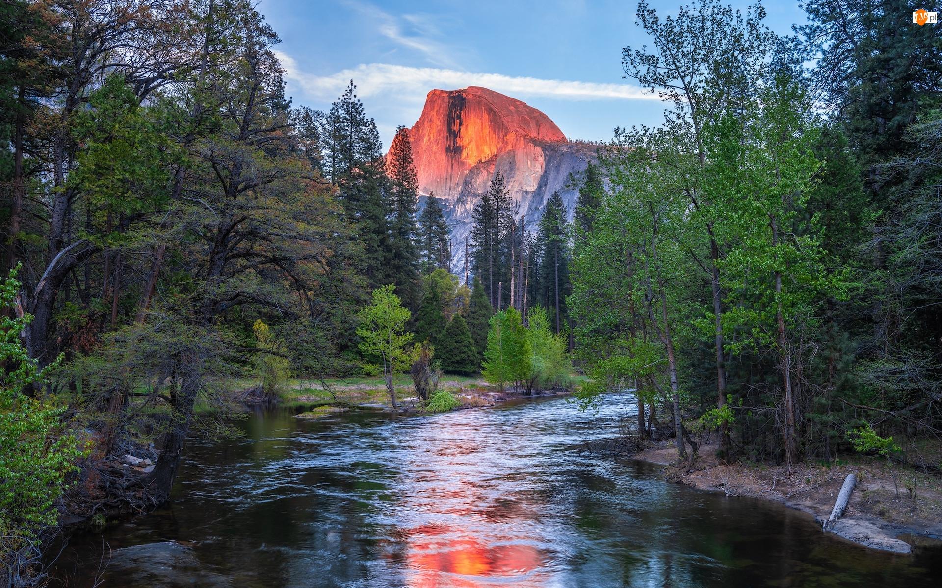 Drzewa, Park Narodowy Yosemite, Góry, Kalifornia, Rzeka, Góra Half Dome, Stany Zjednoczone, Merced River