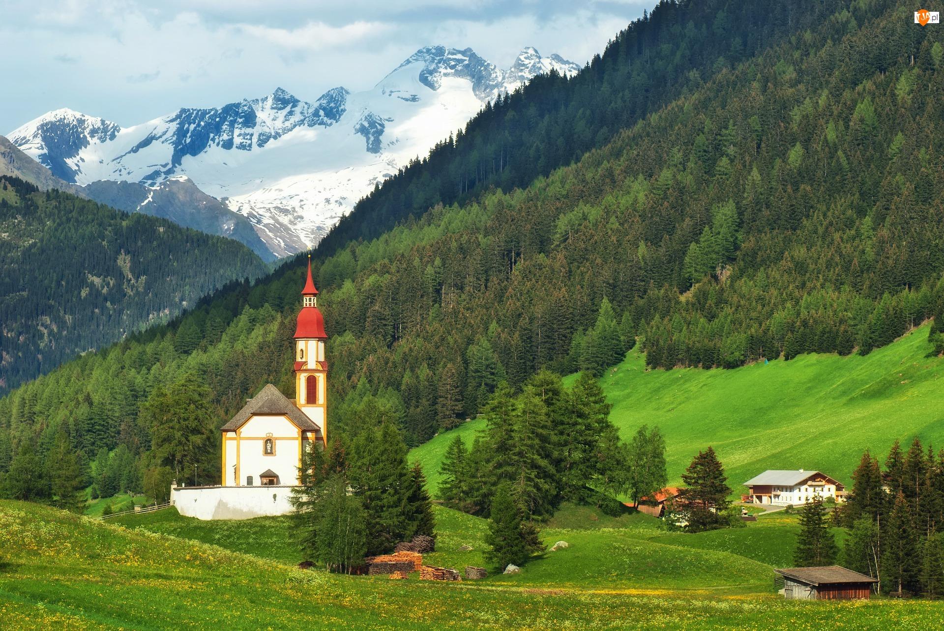 Las, Kościół, Góry, Drzewa