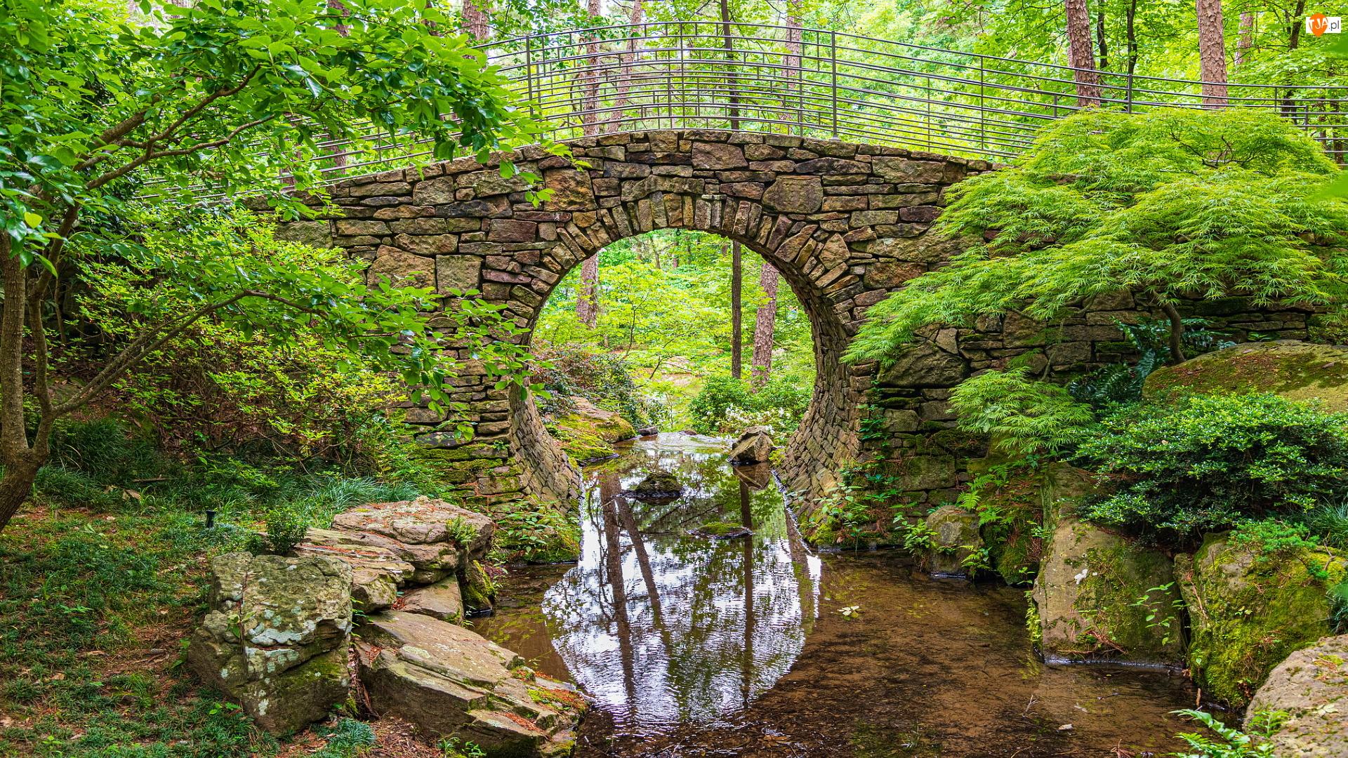 Most, Rzeka, Drzewa, Kamienny, Zielone, Skała, Kamienie