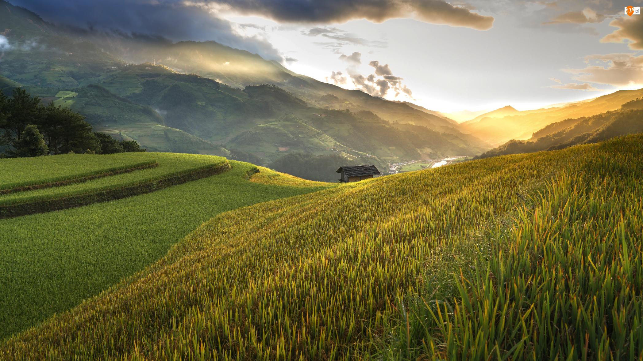 Pola uprawne, Wzgórza, Góry, Dolina