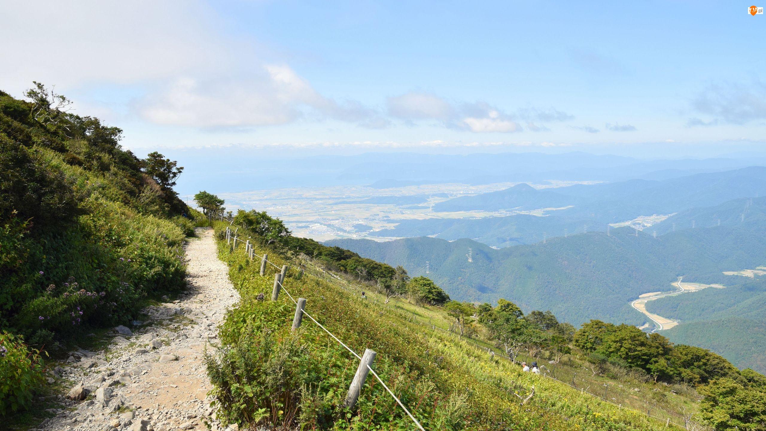 Ścieżka, Dolina, Stok, Góra, Mgła