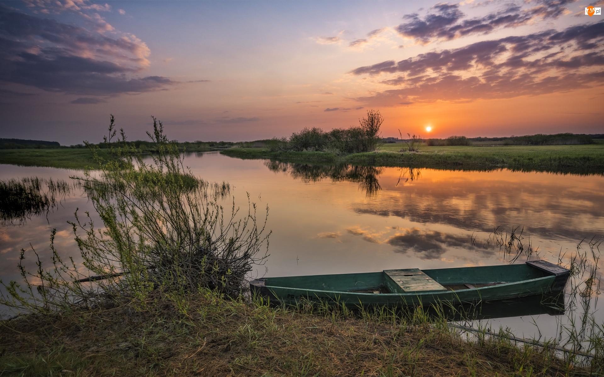 Łódka, Trawa, Rzeka, Wschód słońca, Drzewa