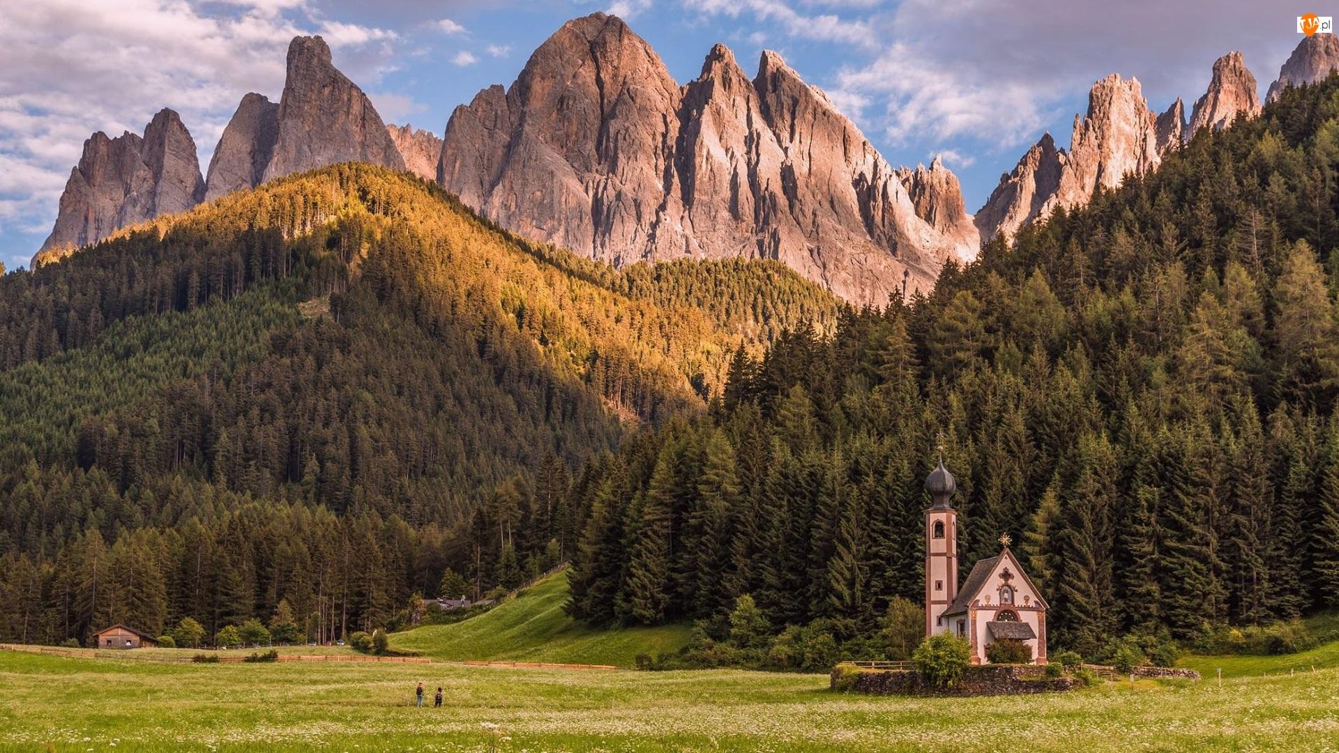 Łąka, Santa Maddalena, Dolina Val di Funes, Wieś, Południowy Tyrol, Włochy, Dolomity, Góry, Kościół św Jana, Drzewa
