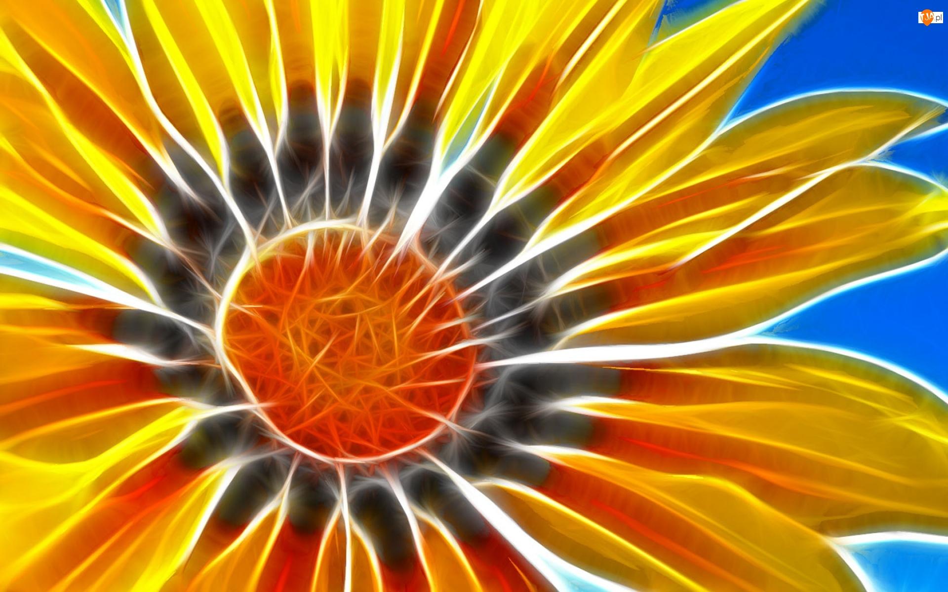 3D, Kwiat, Słonecznika