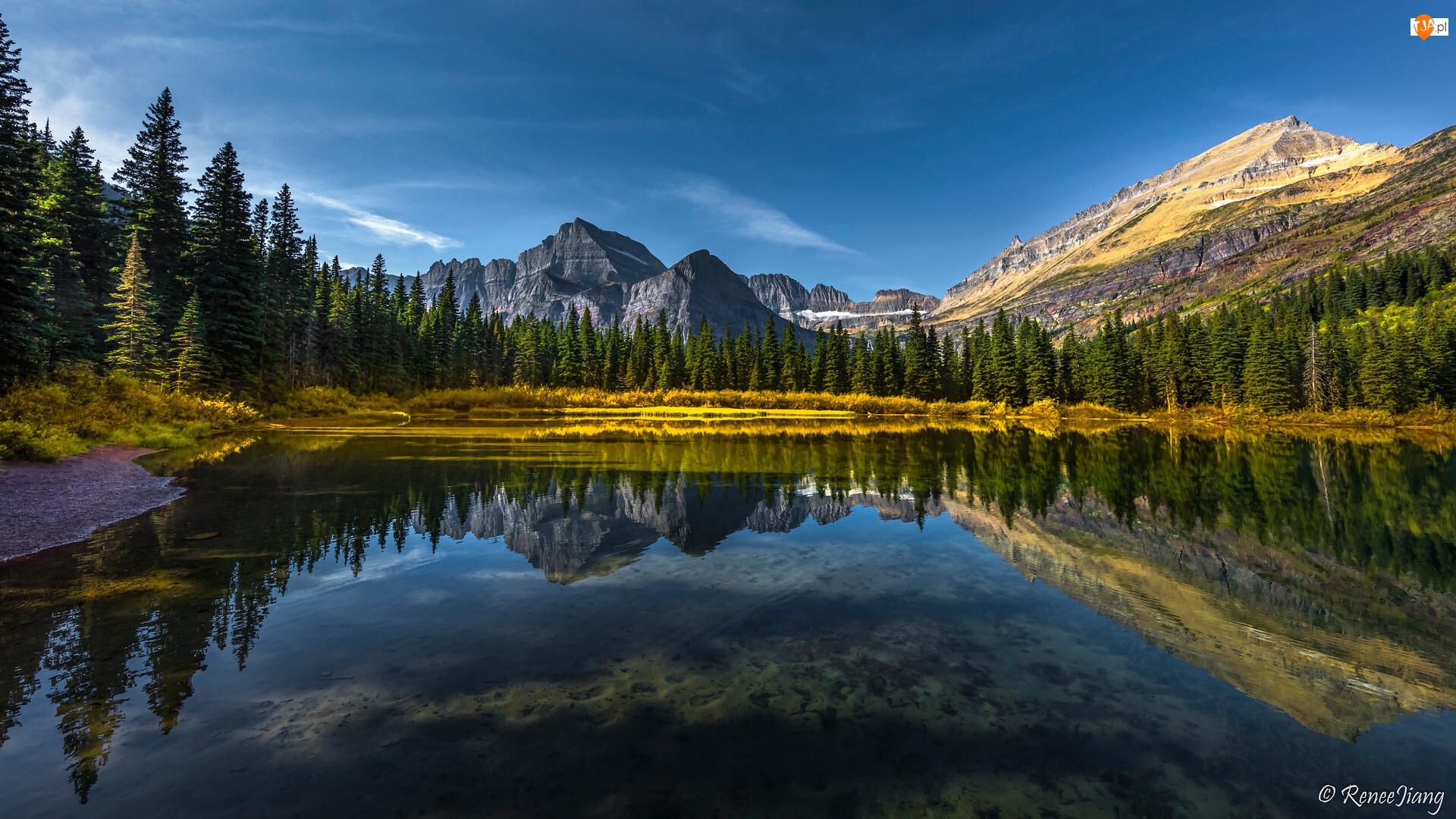 Jezioro, Góry, Zielone, Odbicie, Las, Drzewa
