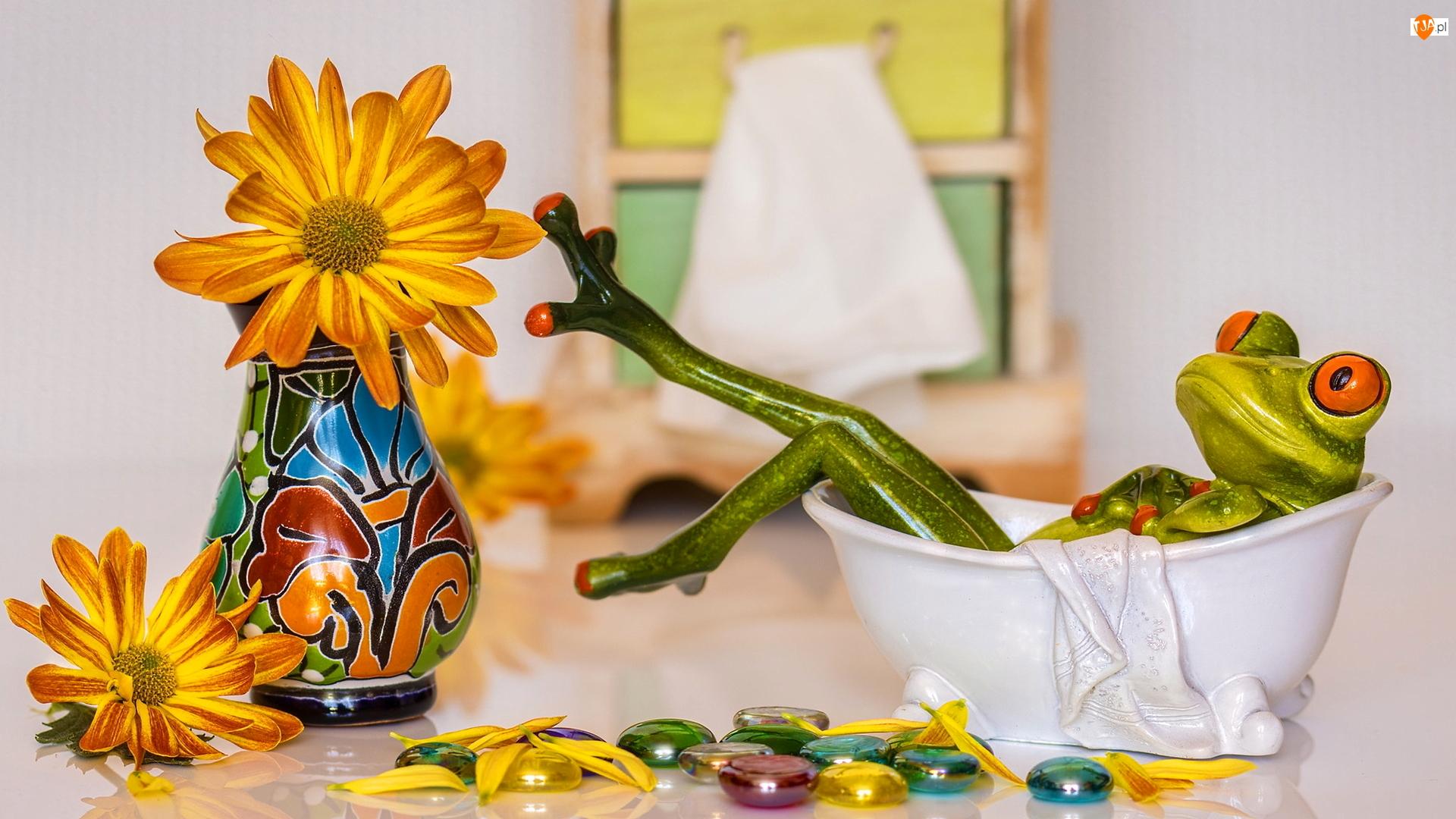 Wanna, Kompozycja, Wazon, Kwiaty, Żaba