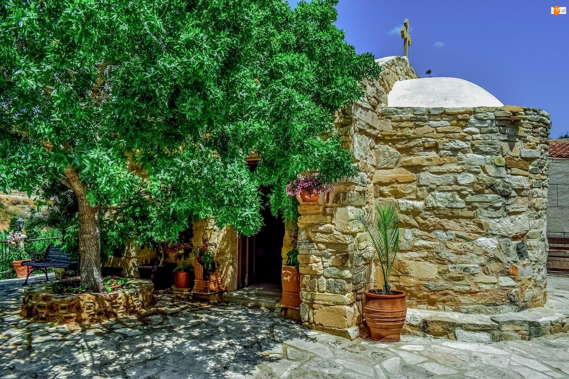 Drzewo, Cypr, Kaplica, Kościół, Ławka