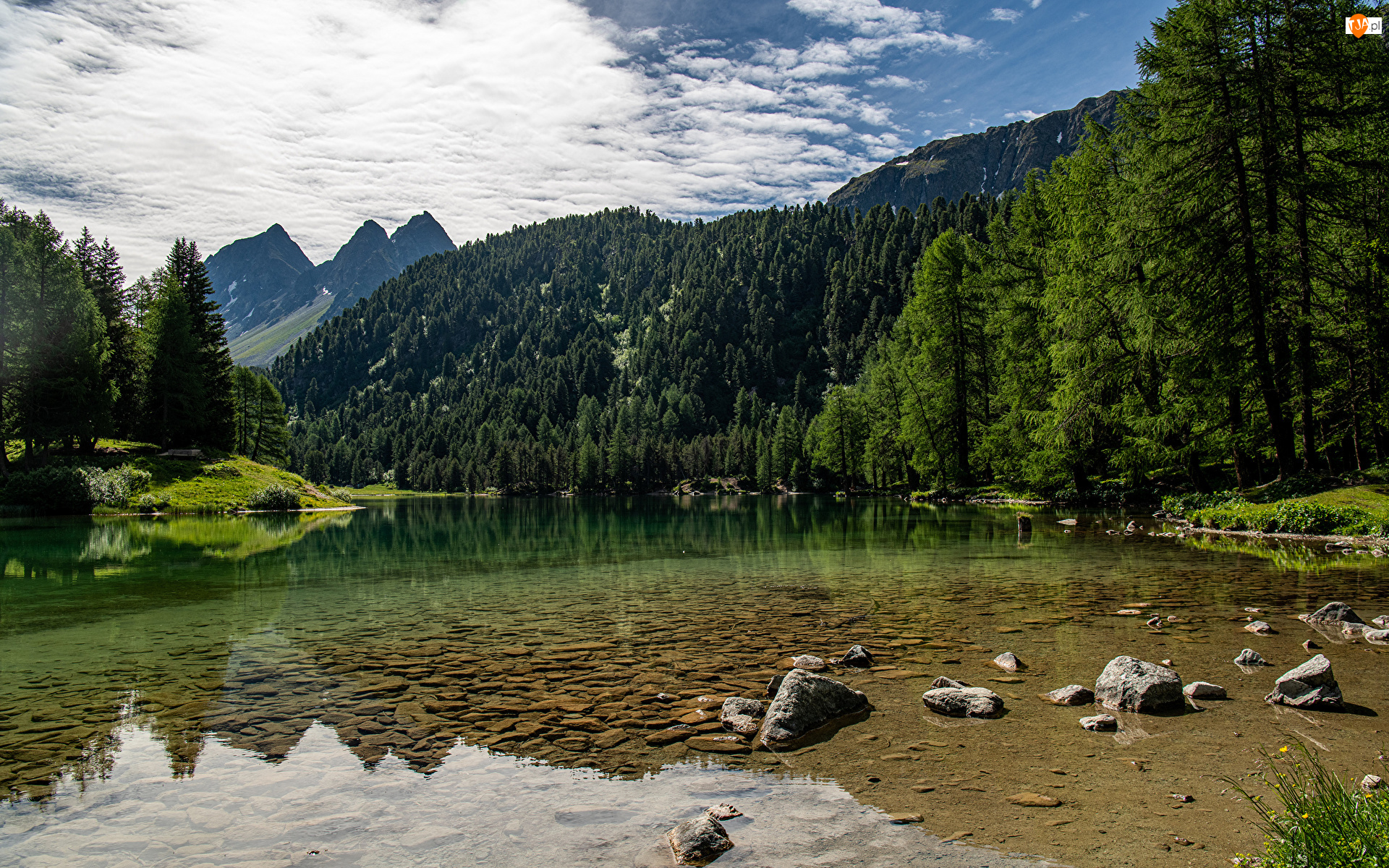 Lai da Palpuogna, Góry, Szwajcaria, Jezioro, Gryzonia, Drzewa, Alpy Retyckie