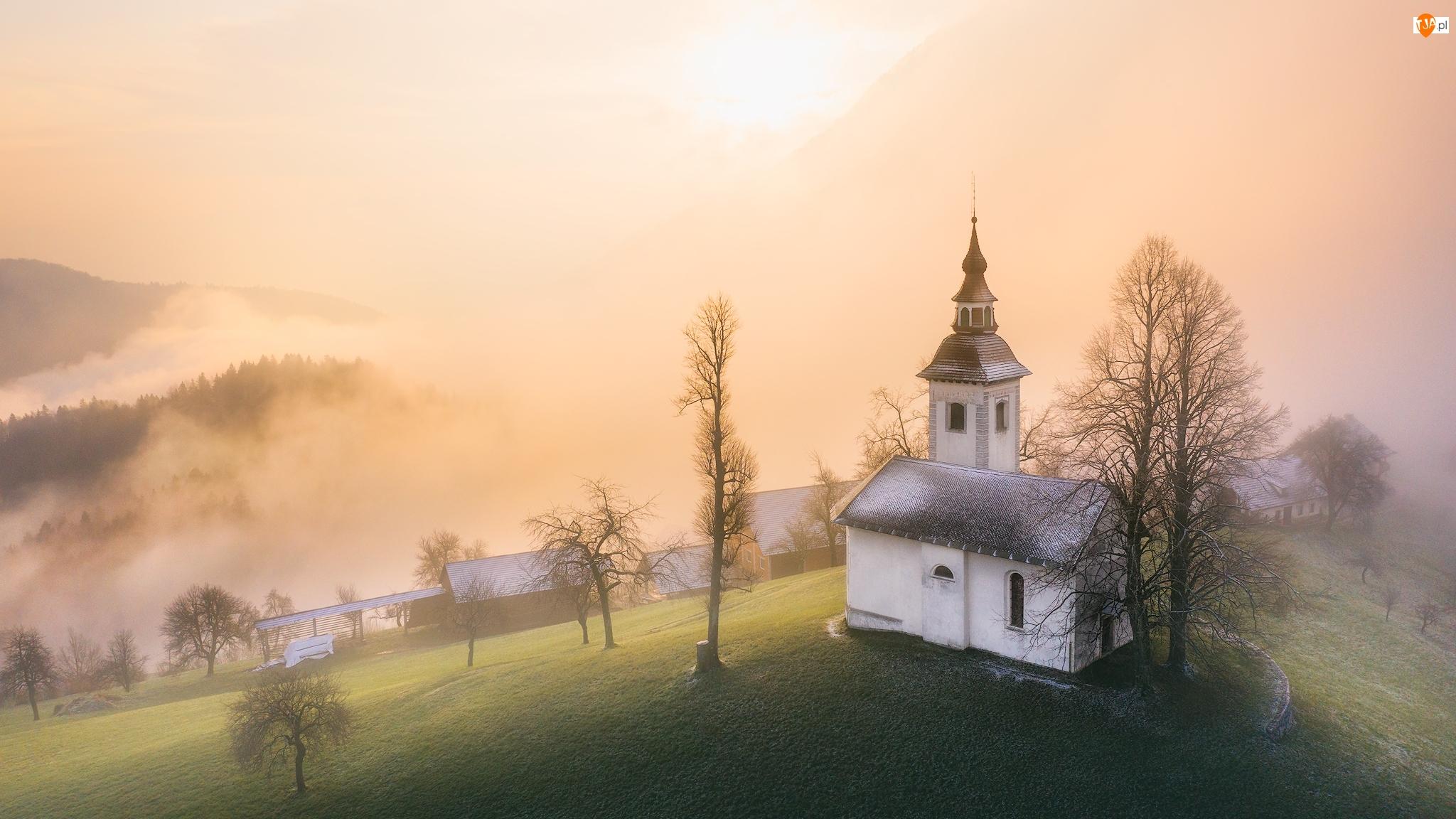Słowenia, Przebijające światło, Wieś Jamnik, Drzewa, Jesień, Mgła, Wzgórze, Kościół św Primusa i Felicjana, Góry