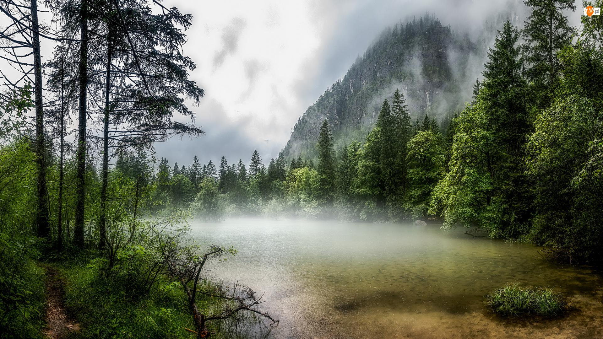 Jezioro Koppenwinkellacke, Ścieżka, Austria, Góry, Obertraun, Mgła, Drzewa