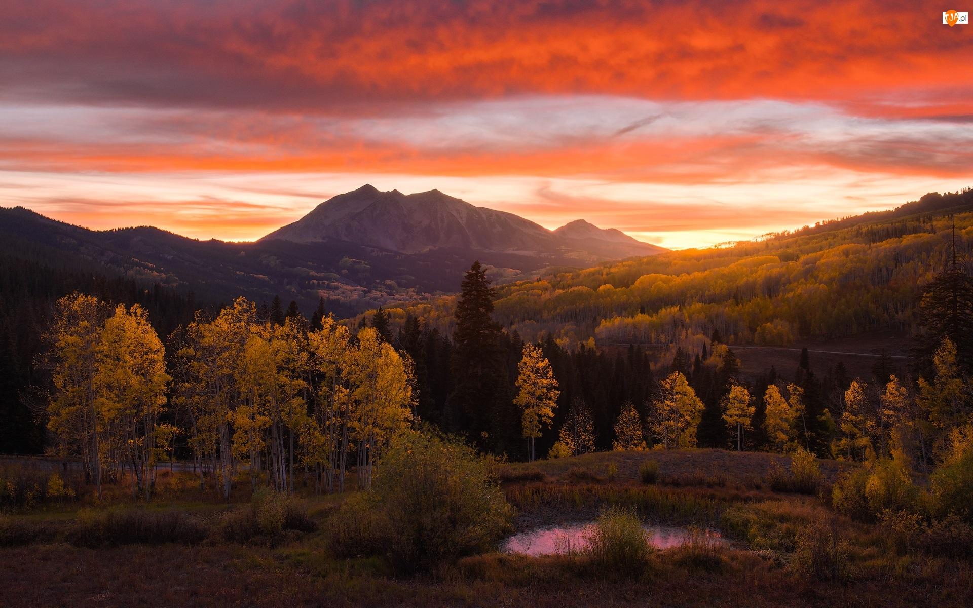 Las, Drzewa, Chmury, Góry, Zachód słońca, Droga, Jesień