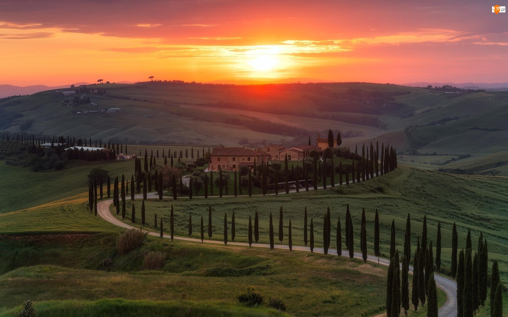 Wzgórza, Domy, Cyprysy, Toskania, Droga, Zachód słońca, Włochy, Drzewa