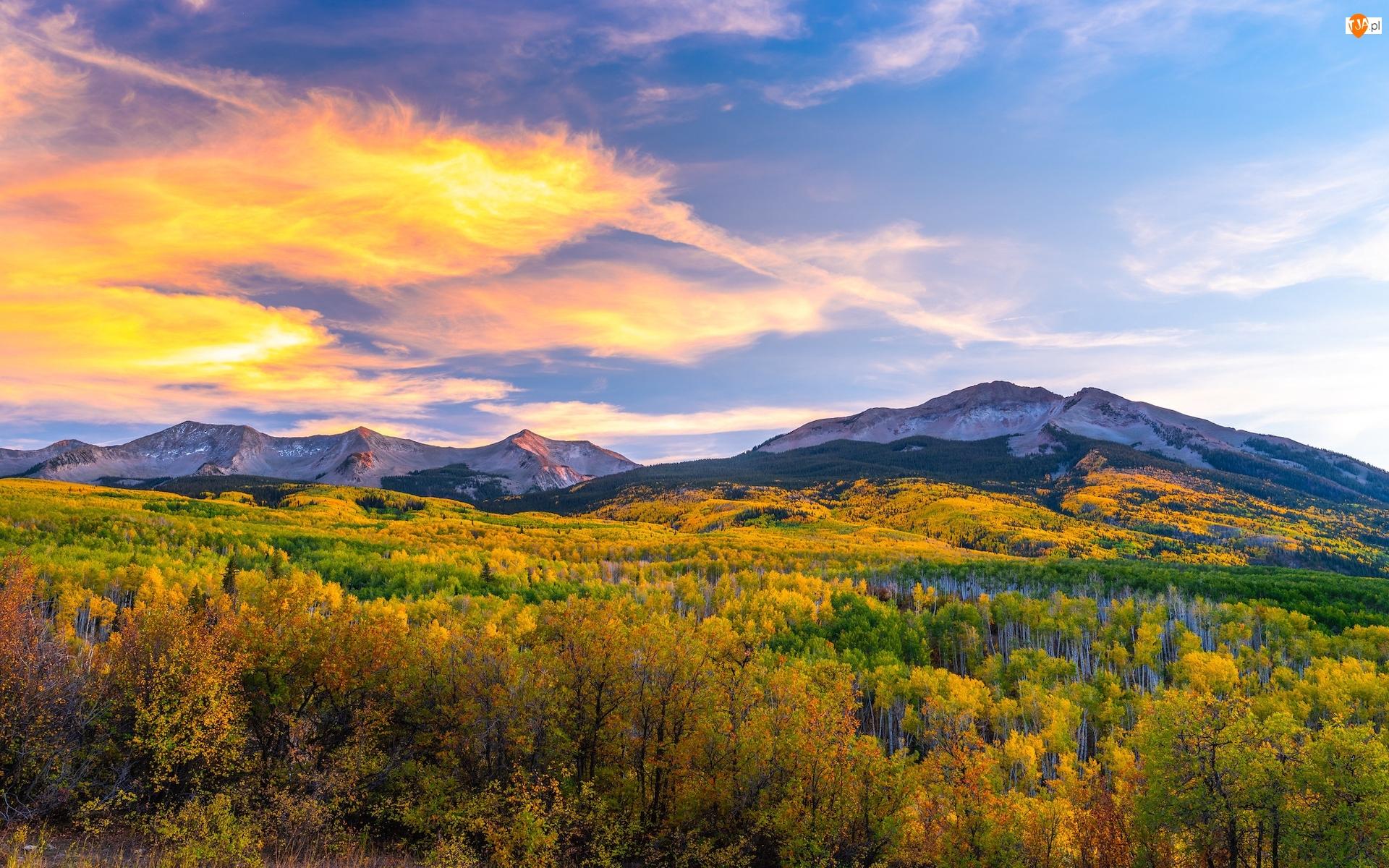 Jesień, Stany Zjednoczone, Kebler Pass, Drzewa, Kolorado, Góry, Lasy, Przełęcz